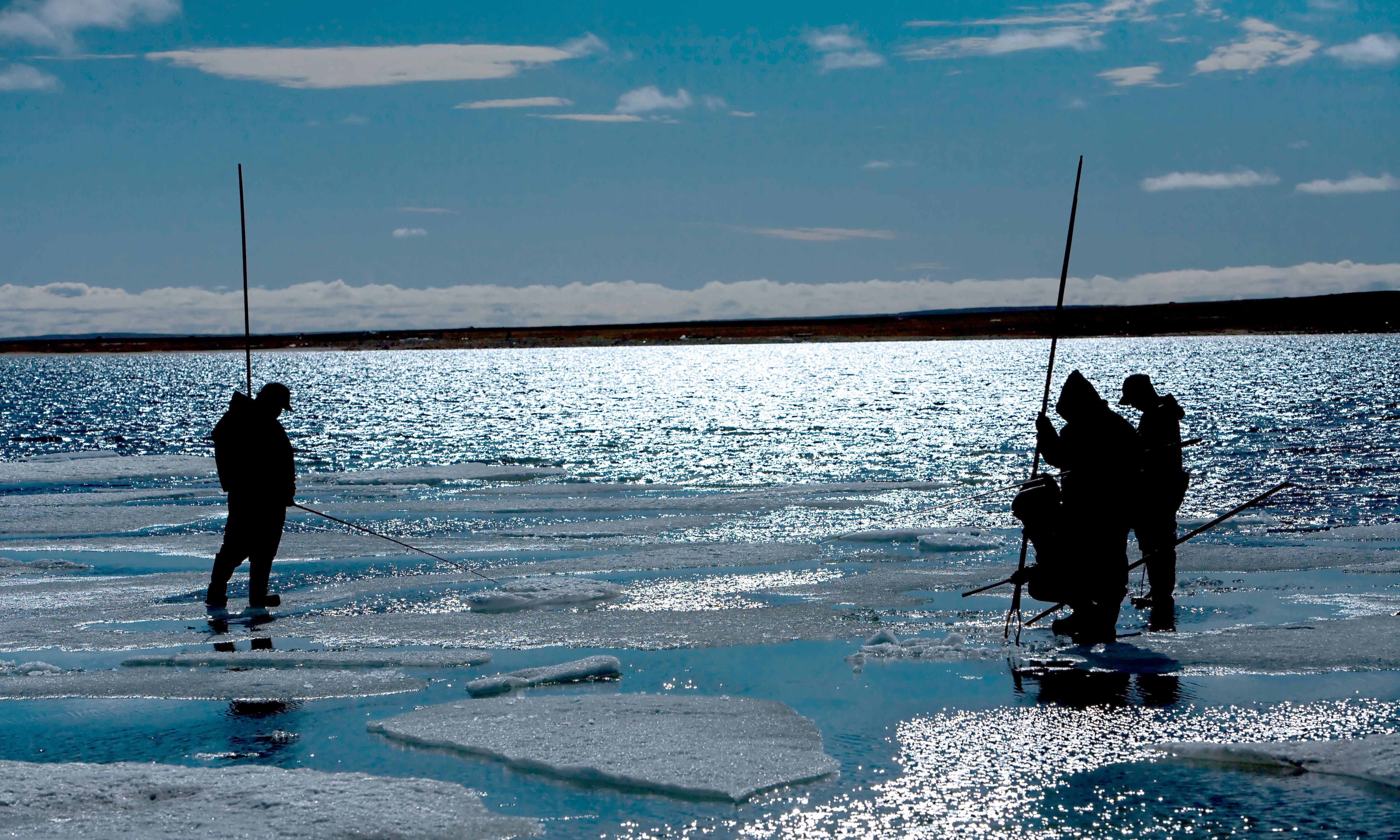 App helps Inuit hunters navigate thinning sea ice in Canadian Arctic