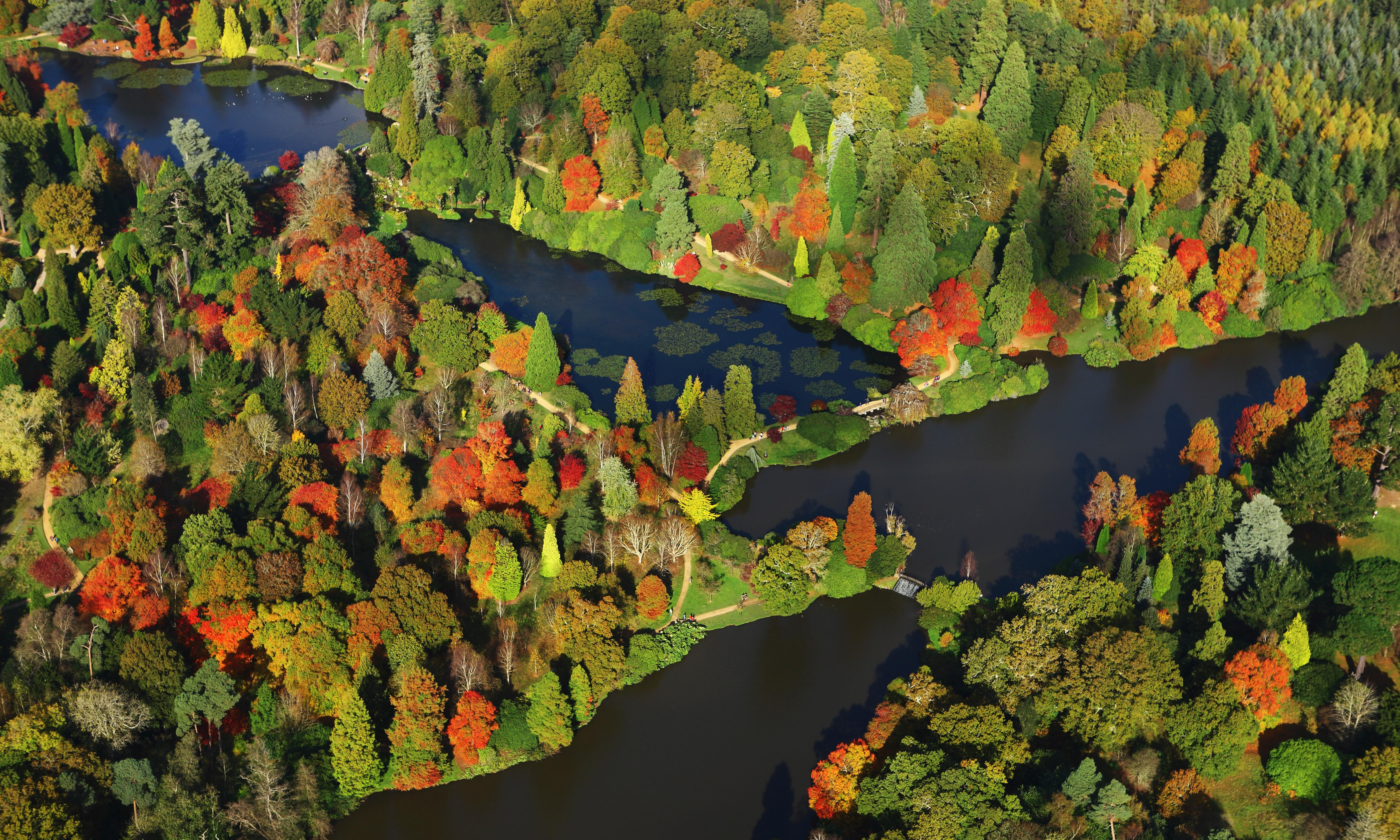Autumn leave: 20 great places to stay in the UK's forests
