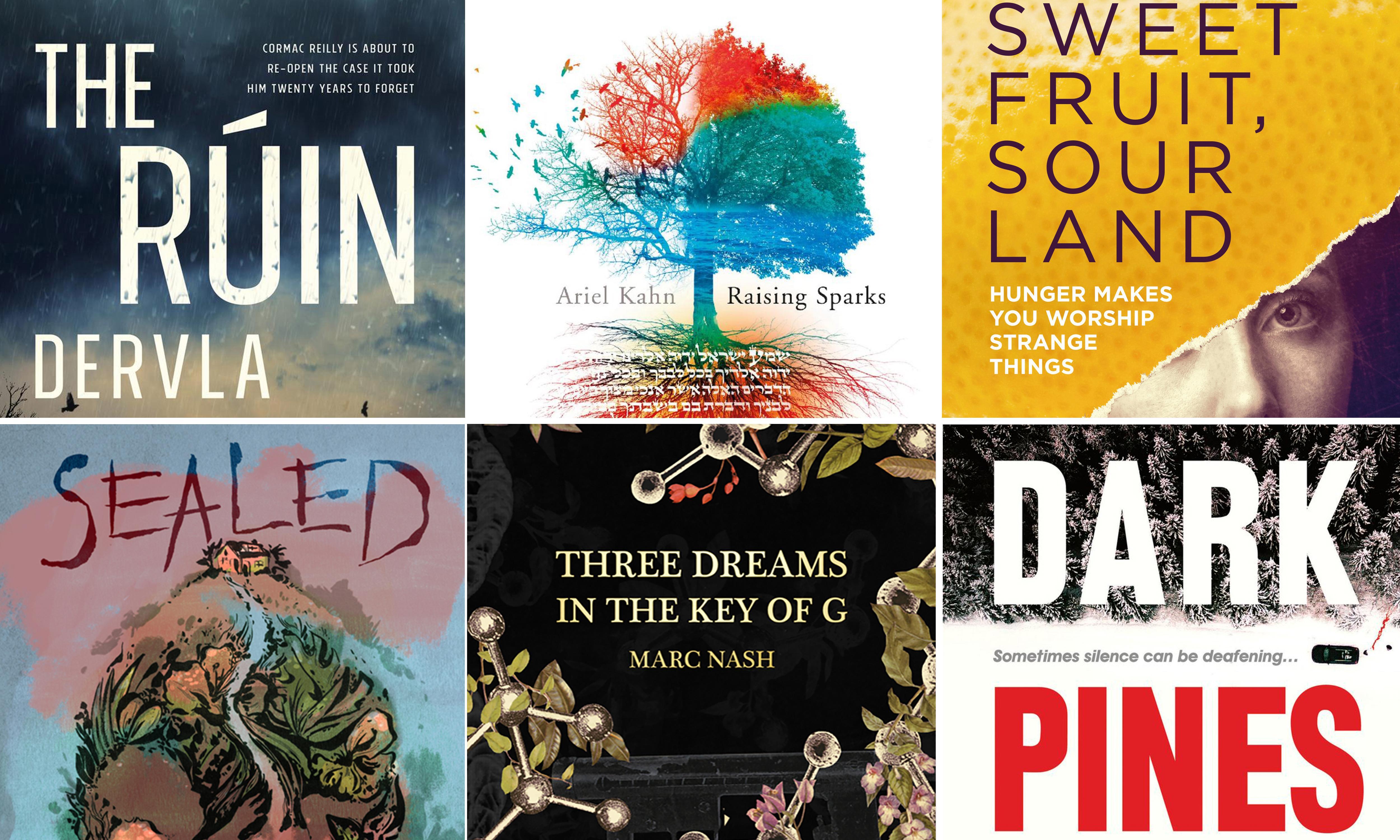 'A tour de force': wildcard novel completes Not the Booker prize shortlist
