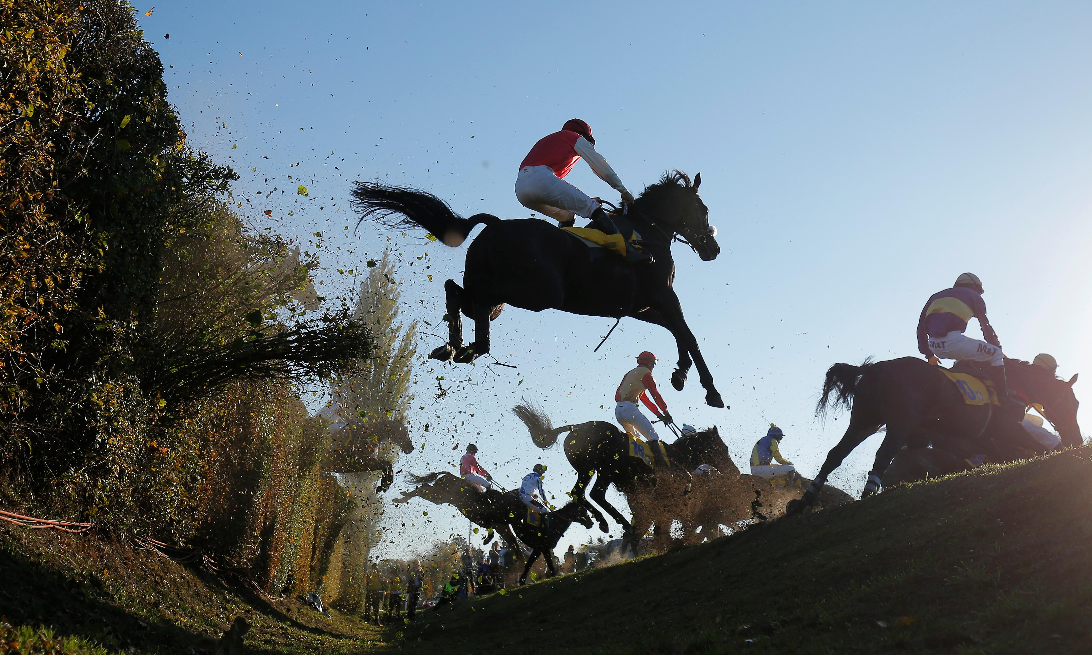 Grand Pardubice Steeplechase: the world's toughest horse race – a photo essay