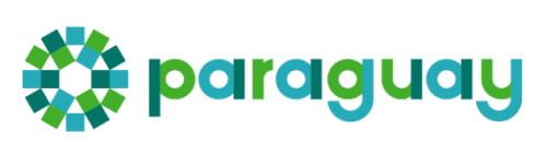 A logo created for Paraguay by Bloom Consulting