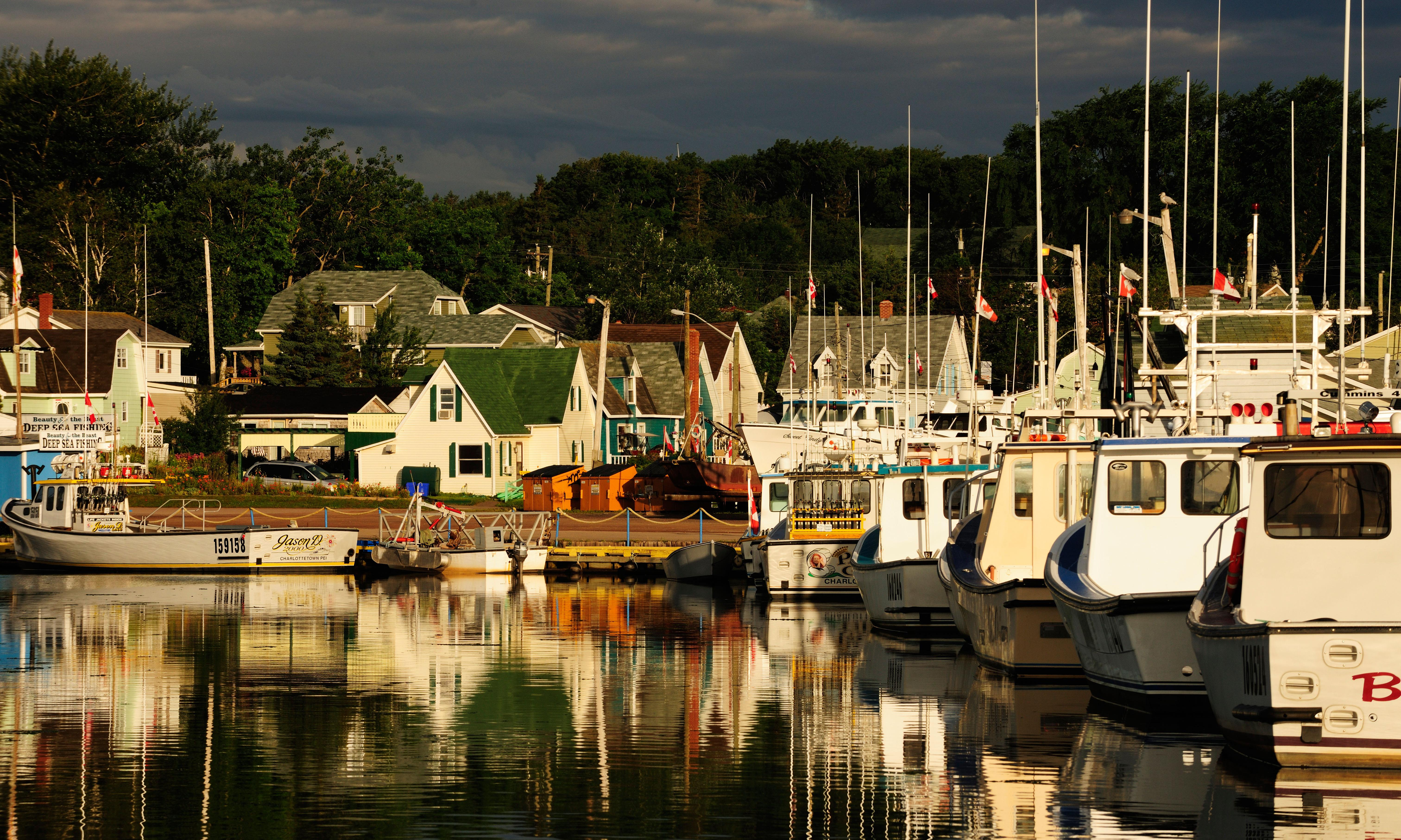 Prince Edward Island elevates Green party to opposition in Canadian first