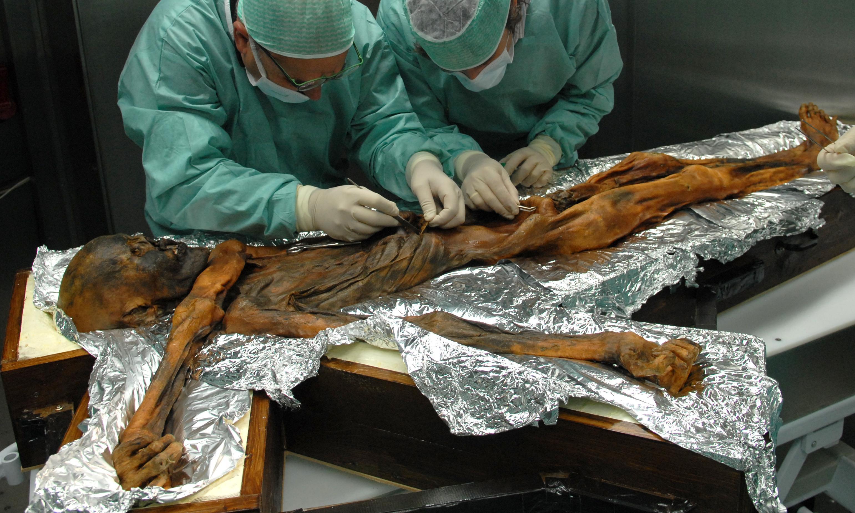 Ötzi's last supper: mummified hunter's final meal revealed