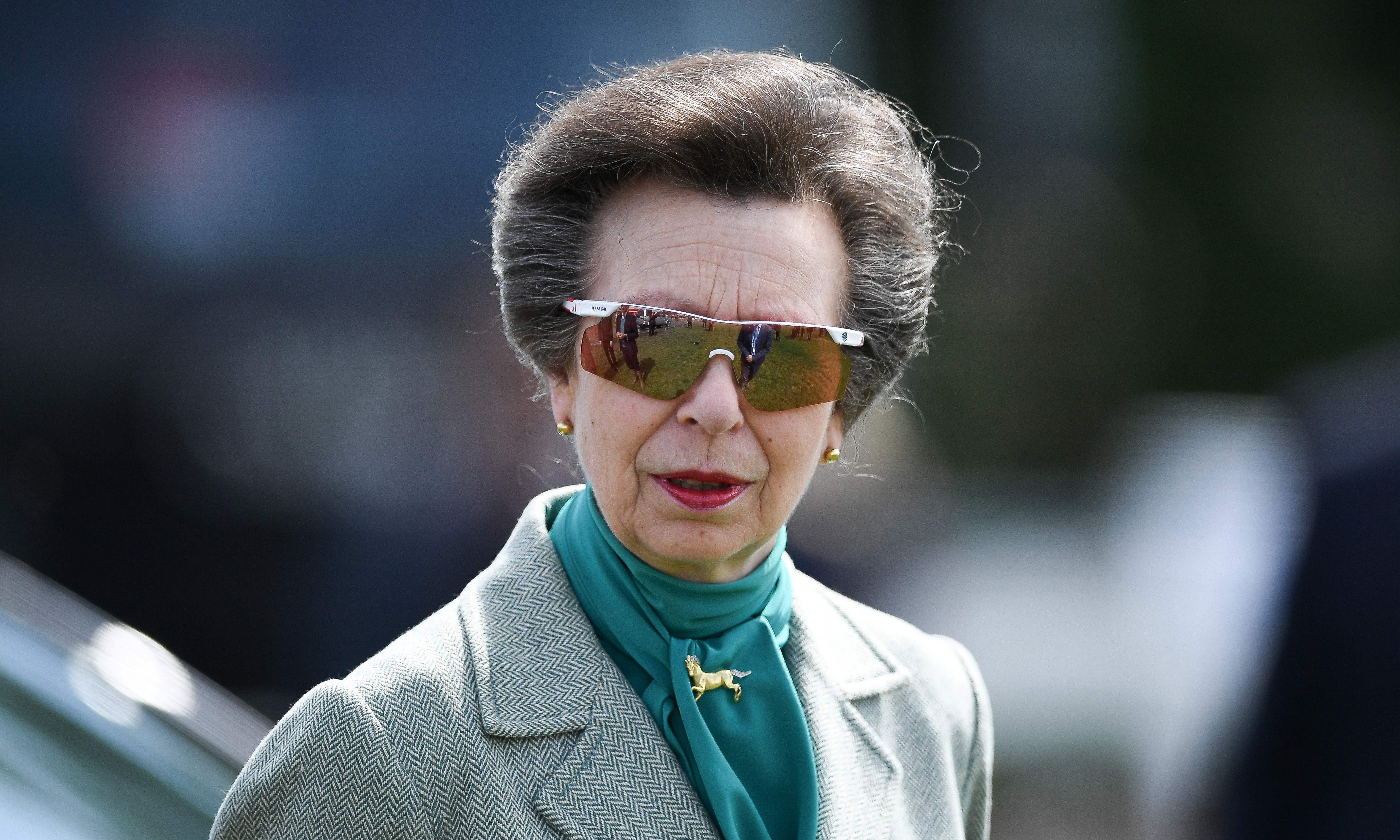 Hard work and horses: why Princess Anne is having a moment