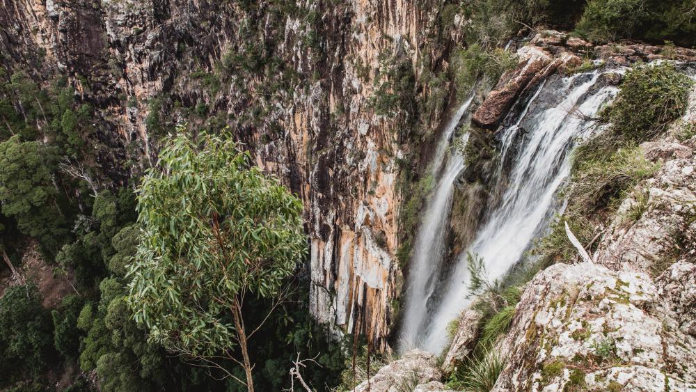 Minyon Falls, Nightcap national park, New South Wales, Australia.