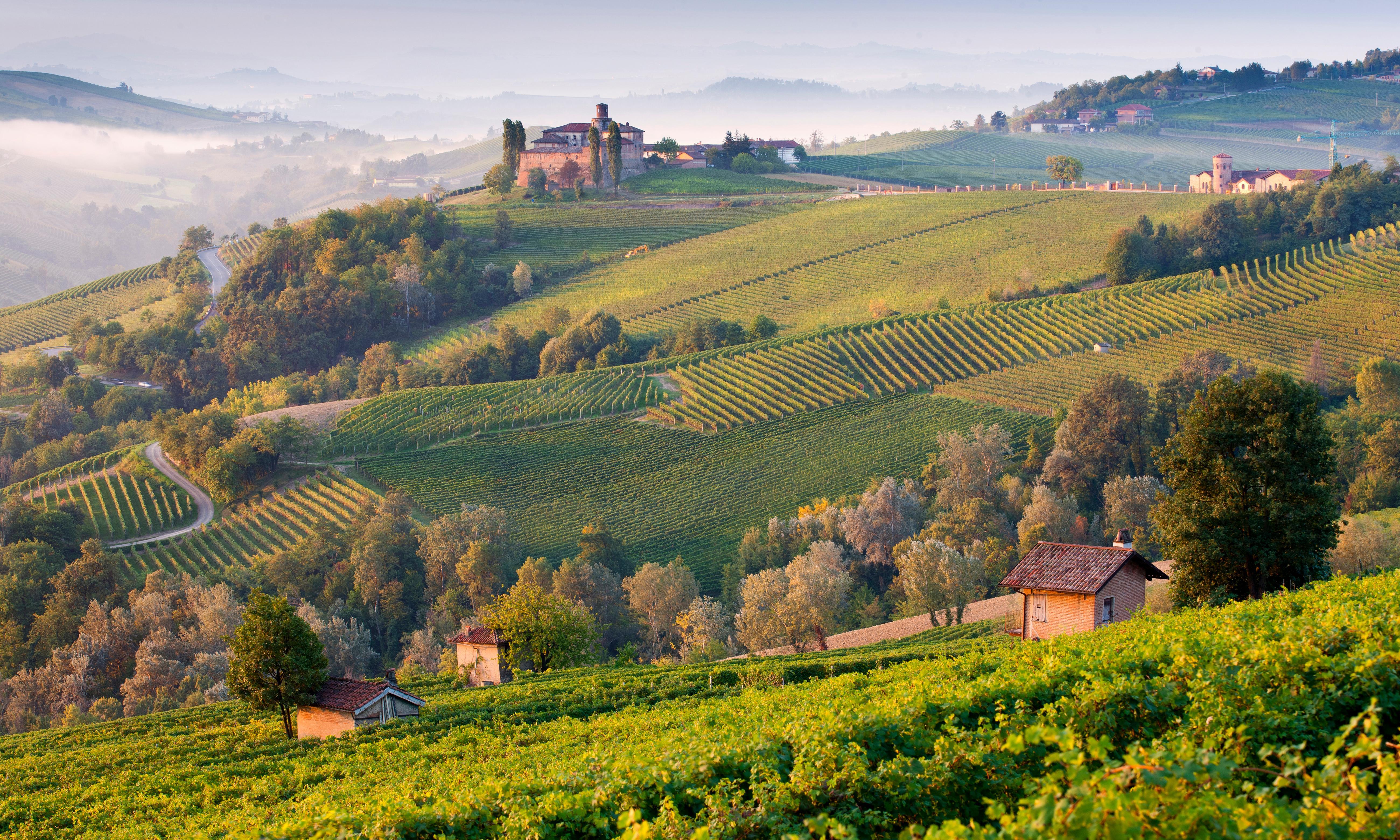 Land of plenty: harvest time in Piedmont, Italy