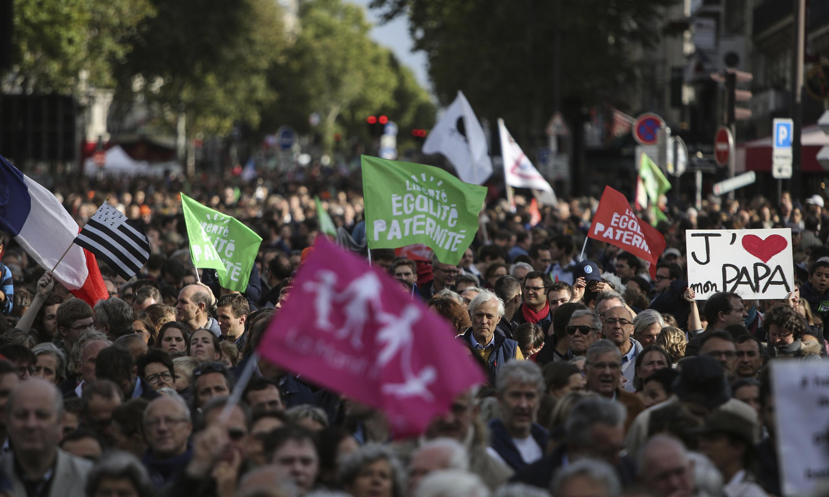 French protests against IVF treatment for gay and single women