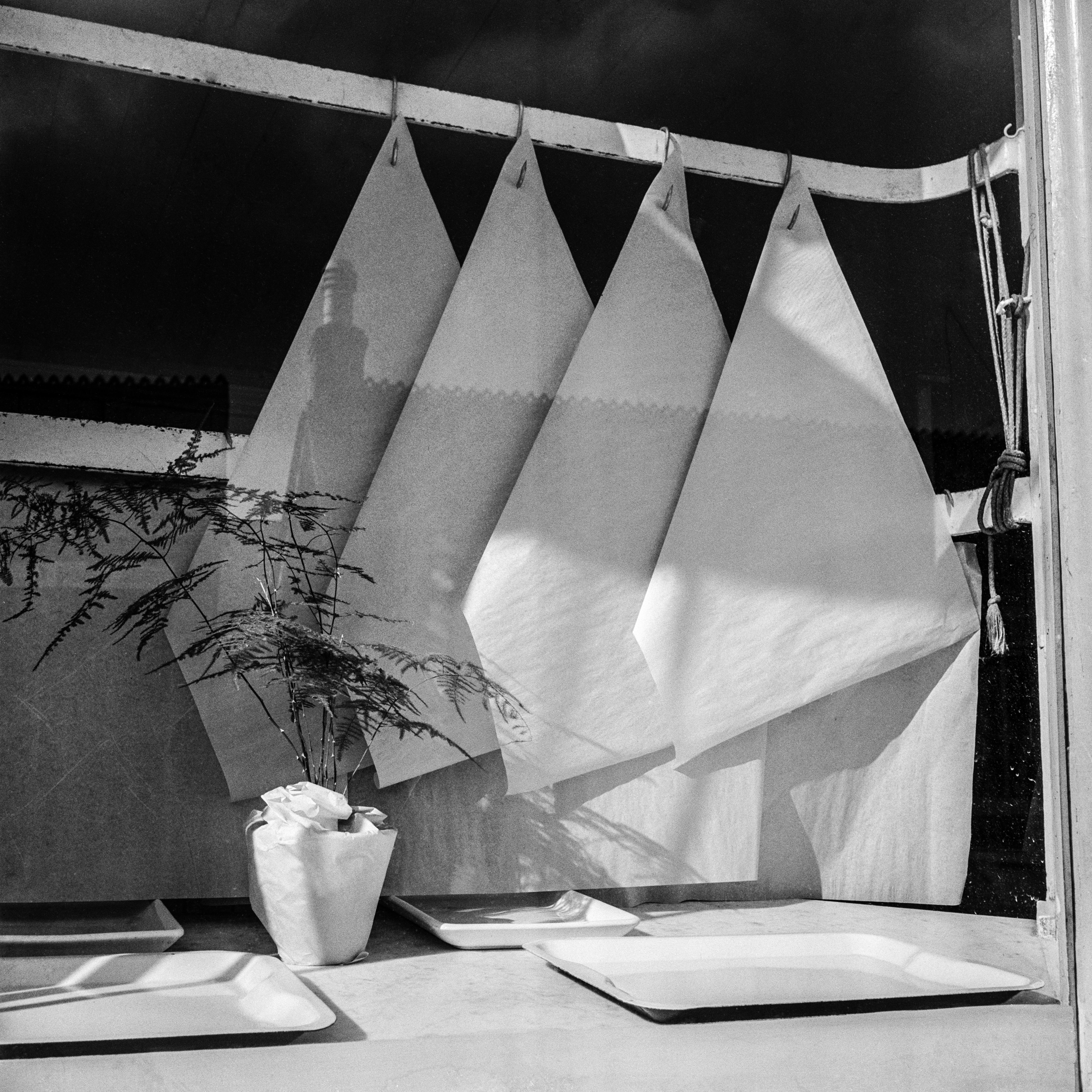 Observer archive: butcher's window, 11 March 1951