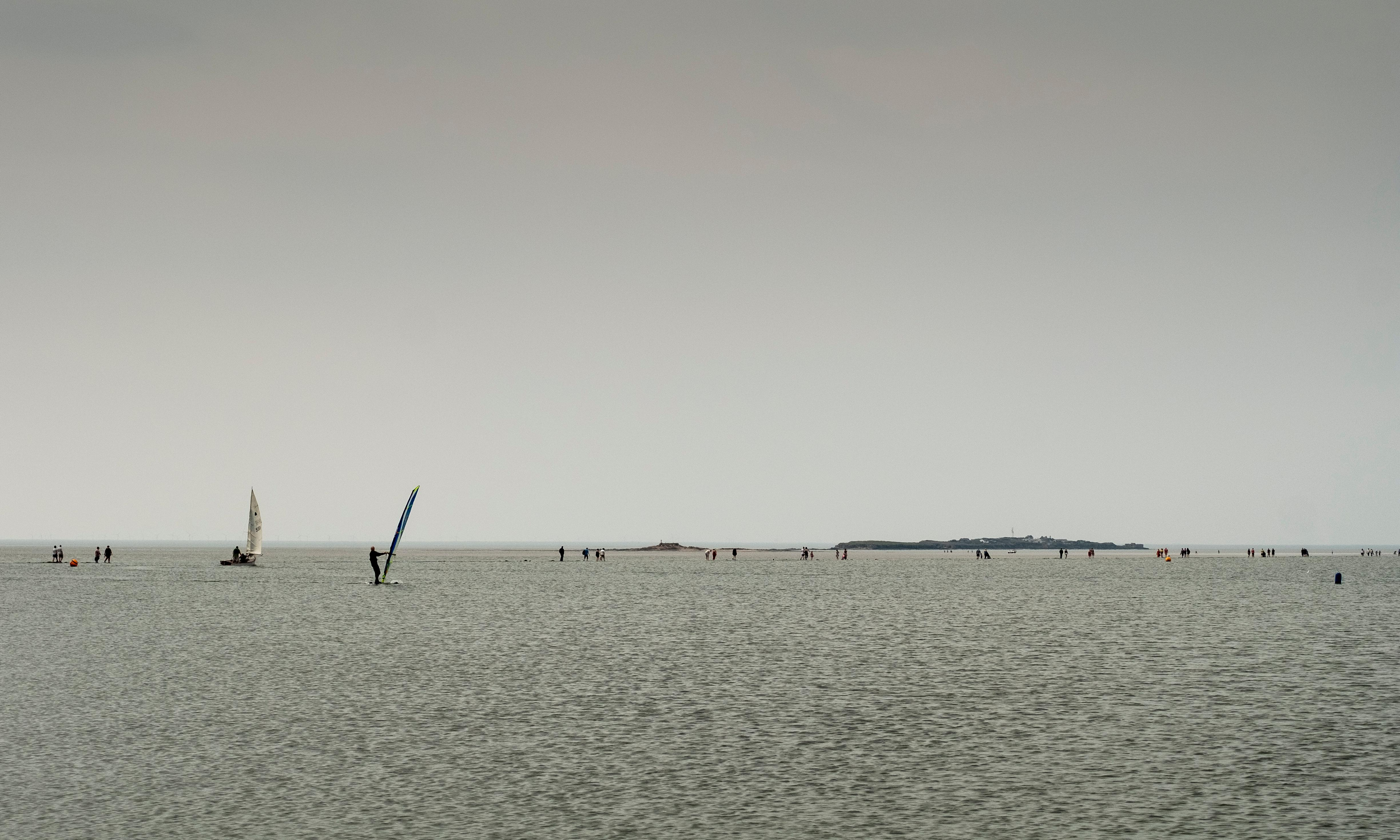 Country diary: people are walking in the middle of the sea