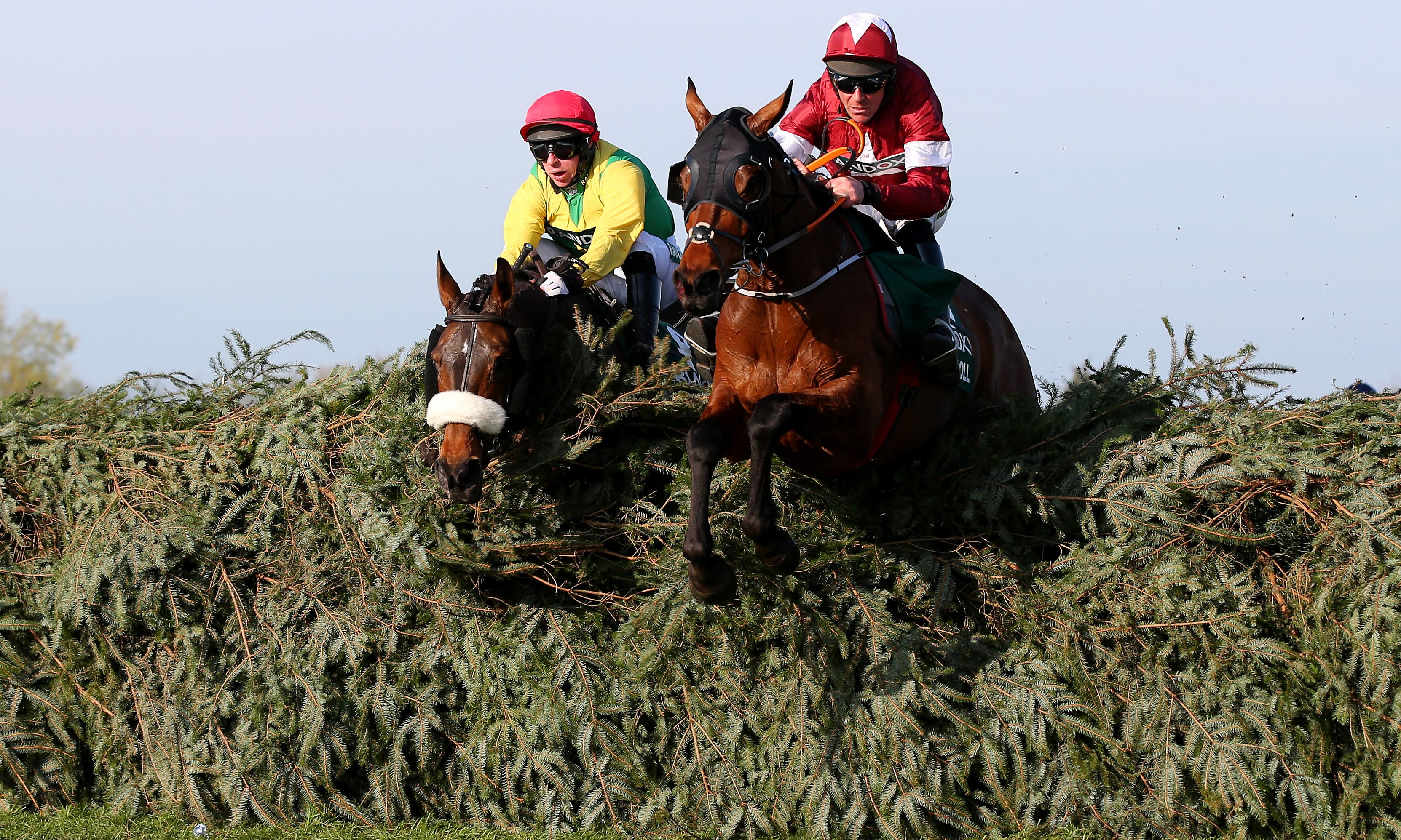 Talking Horses: Timeform urges BHA to rethink approach on welfare