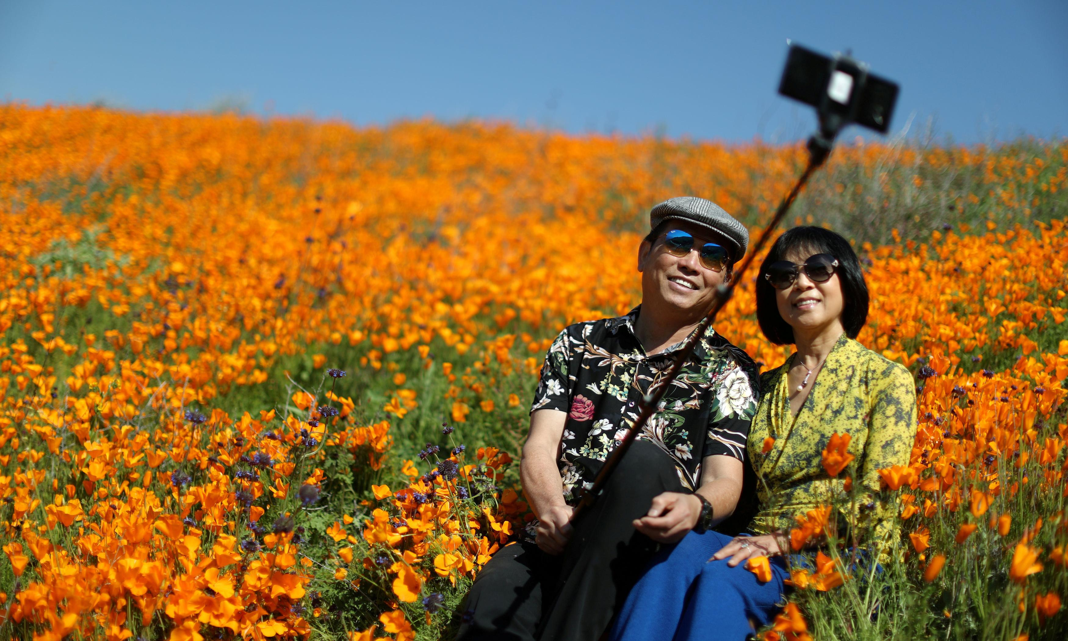 #Superbloom or #poppynightmare? Selfie chaos forces canyon closure