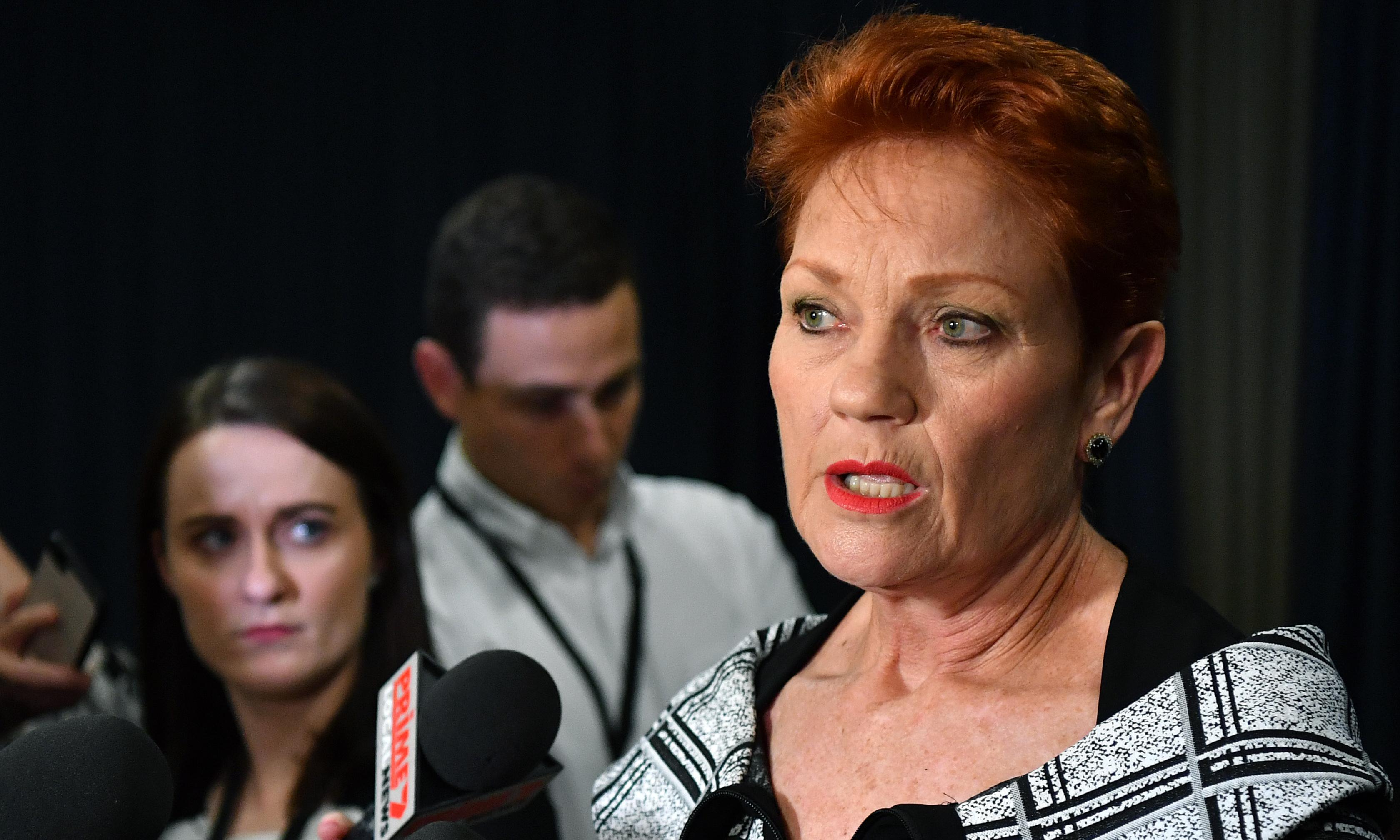 Pauline Hanson claims credit as Morrison announces inquiry into family law system