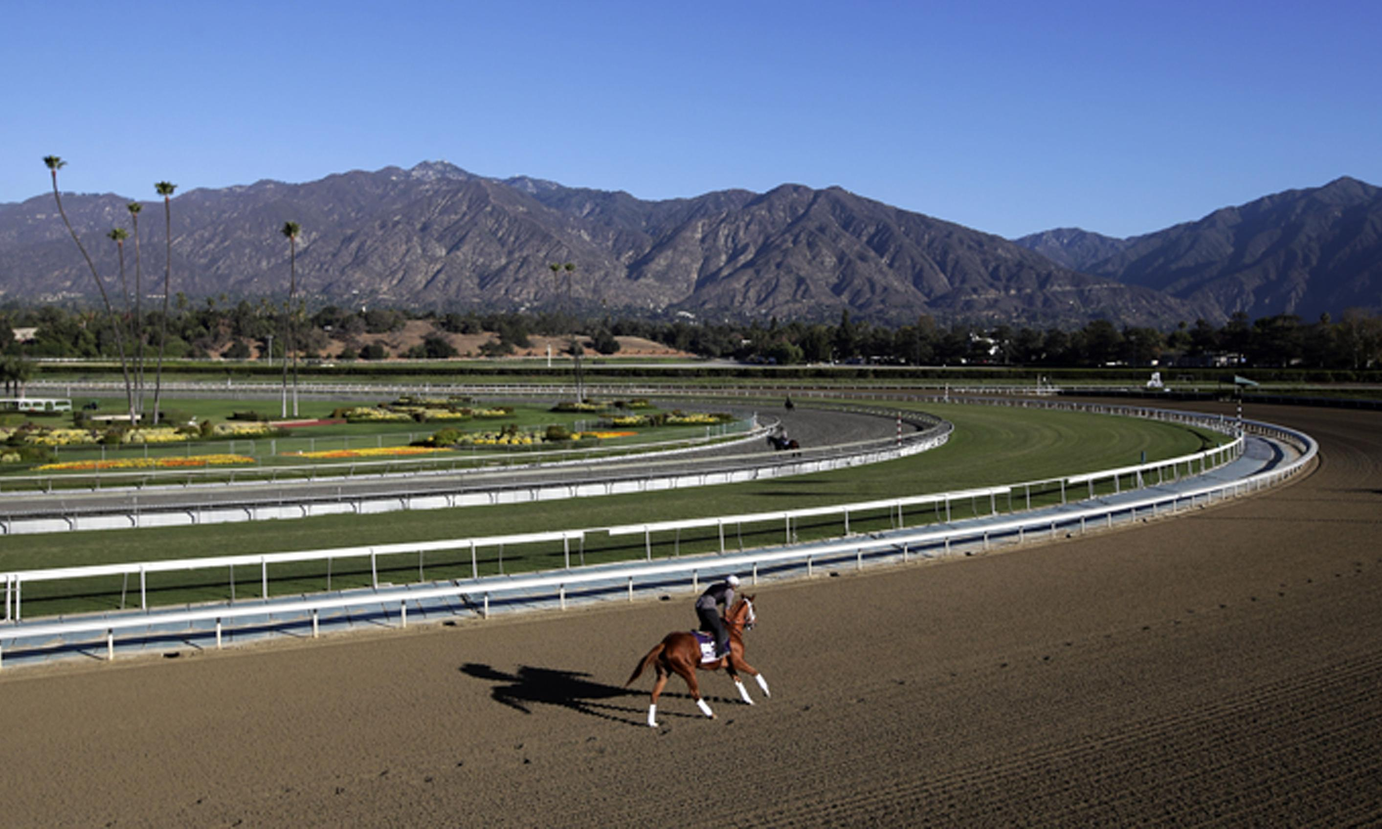Third horse dies in nine days as fatalities mount once again at Santa Anita