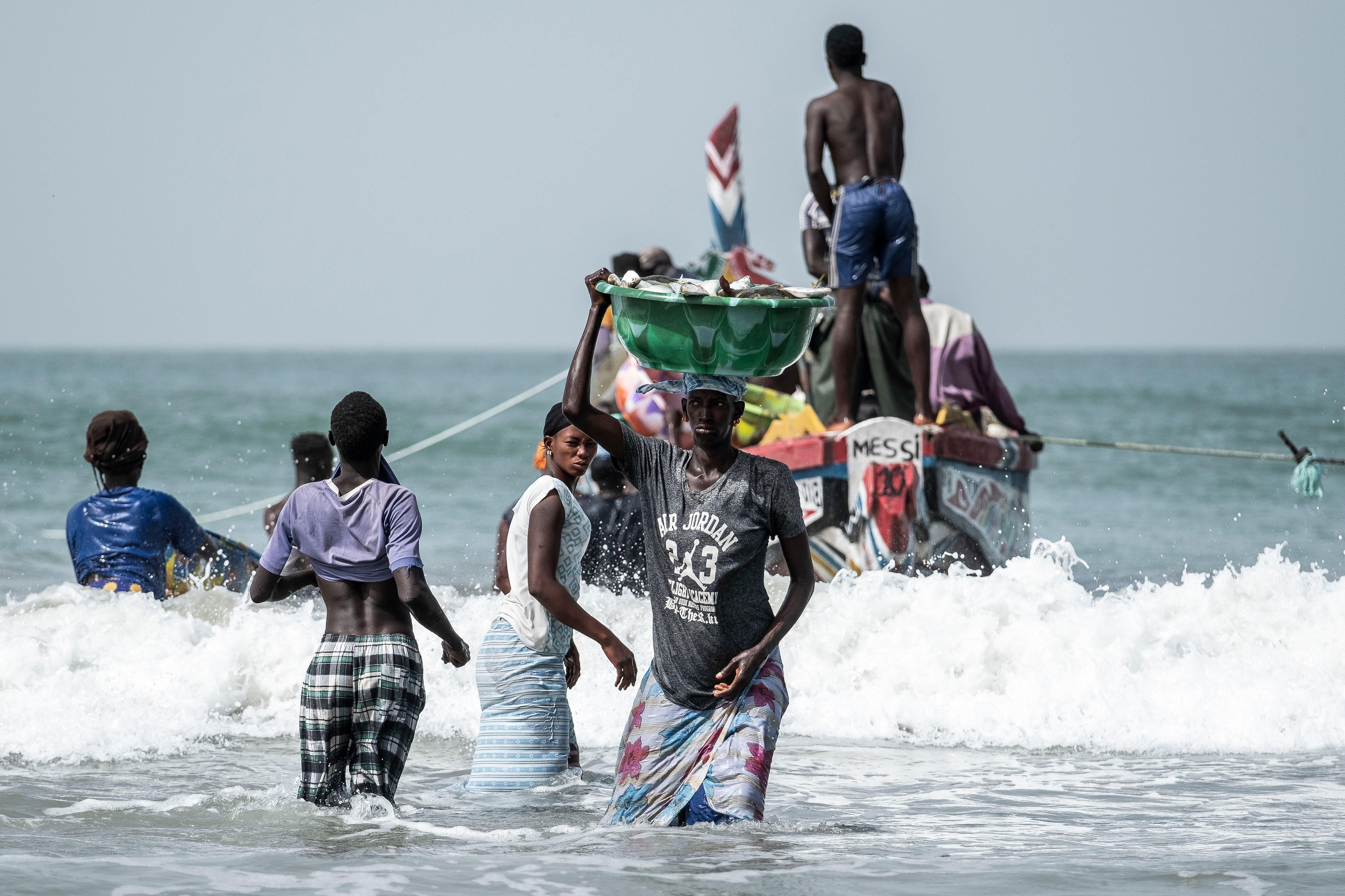 Chinese fishmeal plants leave fishermen in the Gambia all at sea
