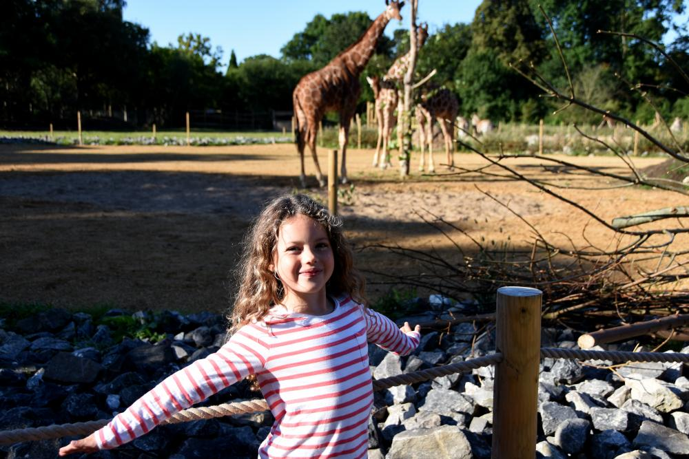 Nell and the giraffes