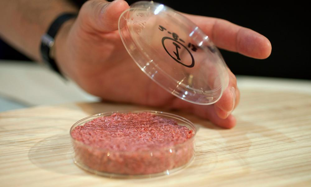 Professor Mark Post shows the world's first lab-grown beefburger in London, August 2013.
