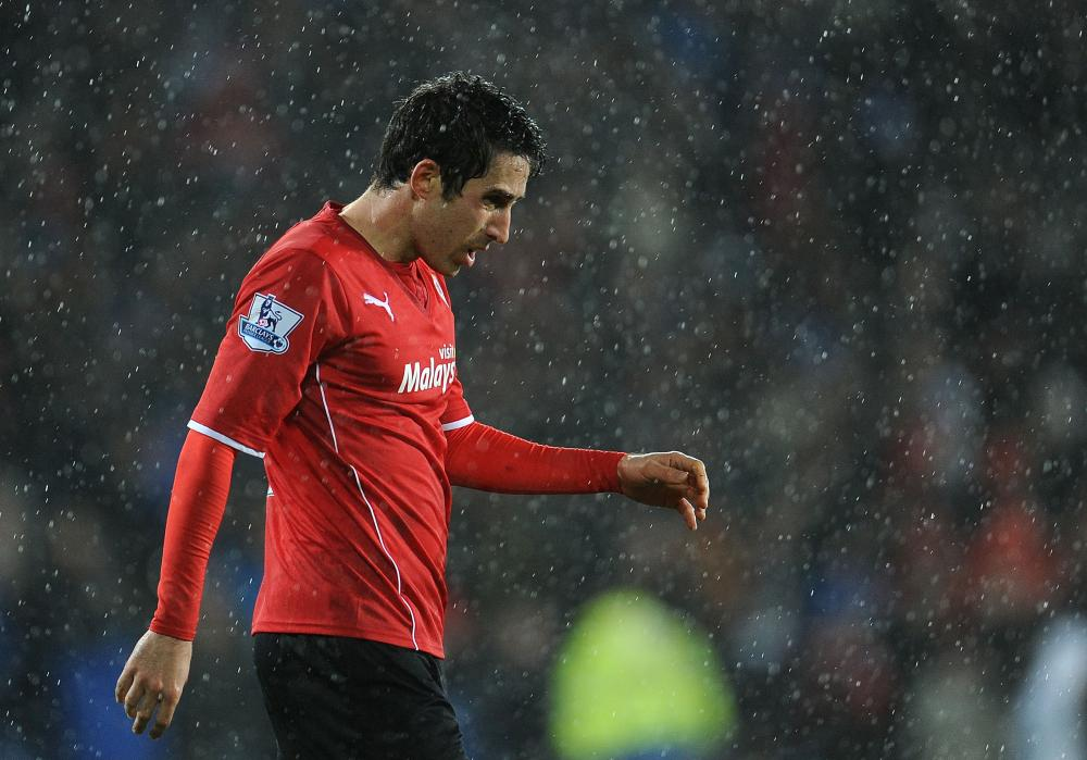Peter Whittingham and Cardiff City had a tough time in their only Premier League campaign.