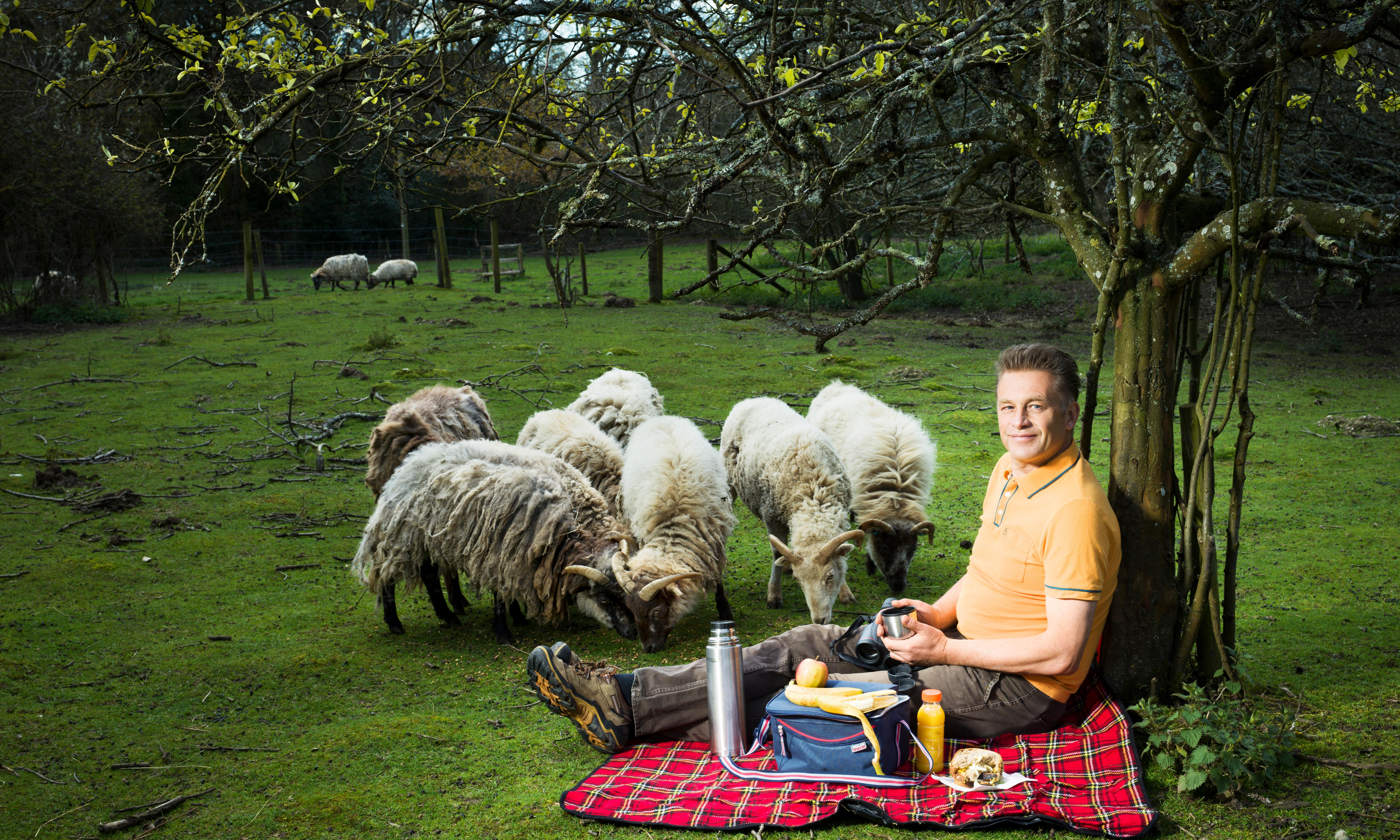 Chris Packham: There's nothing I can do about abuse. I just have to understand it and work harder