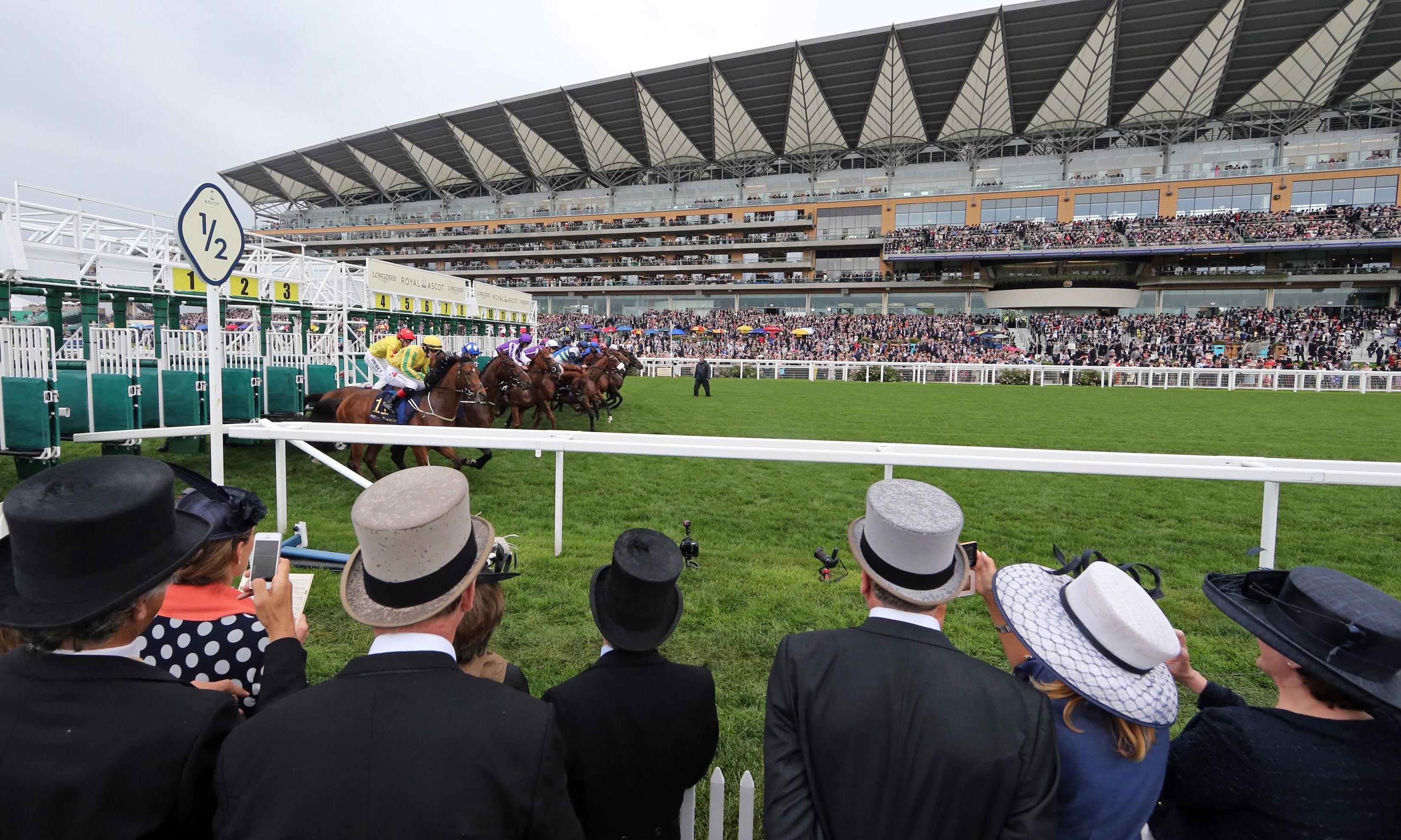 Talking Horses: Stradivarius can win second Gold Cup at Royal Ascot