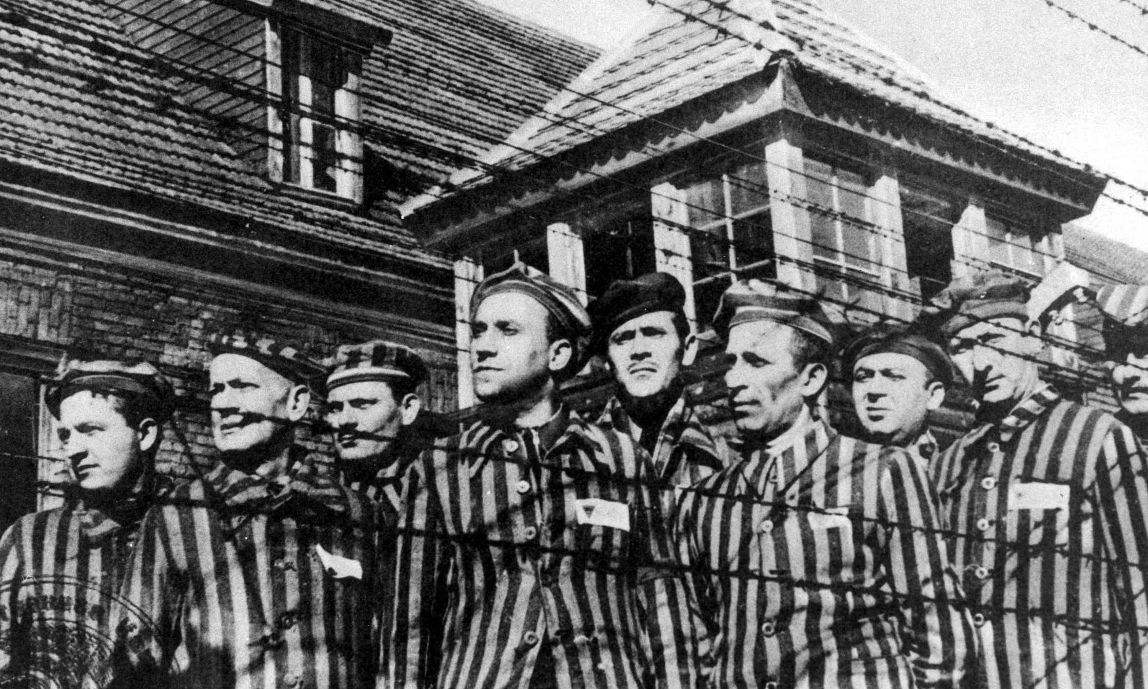 Primo Levi brings readers as close as prose can to the horror of Auschwitz