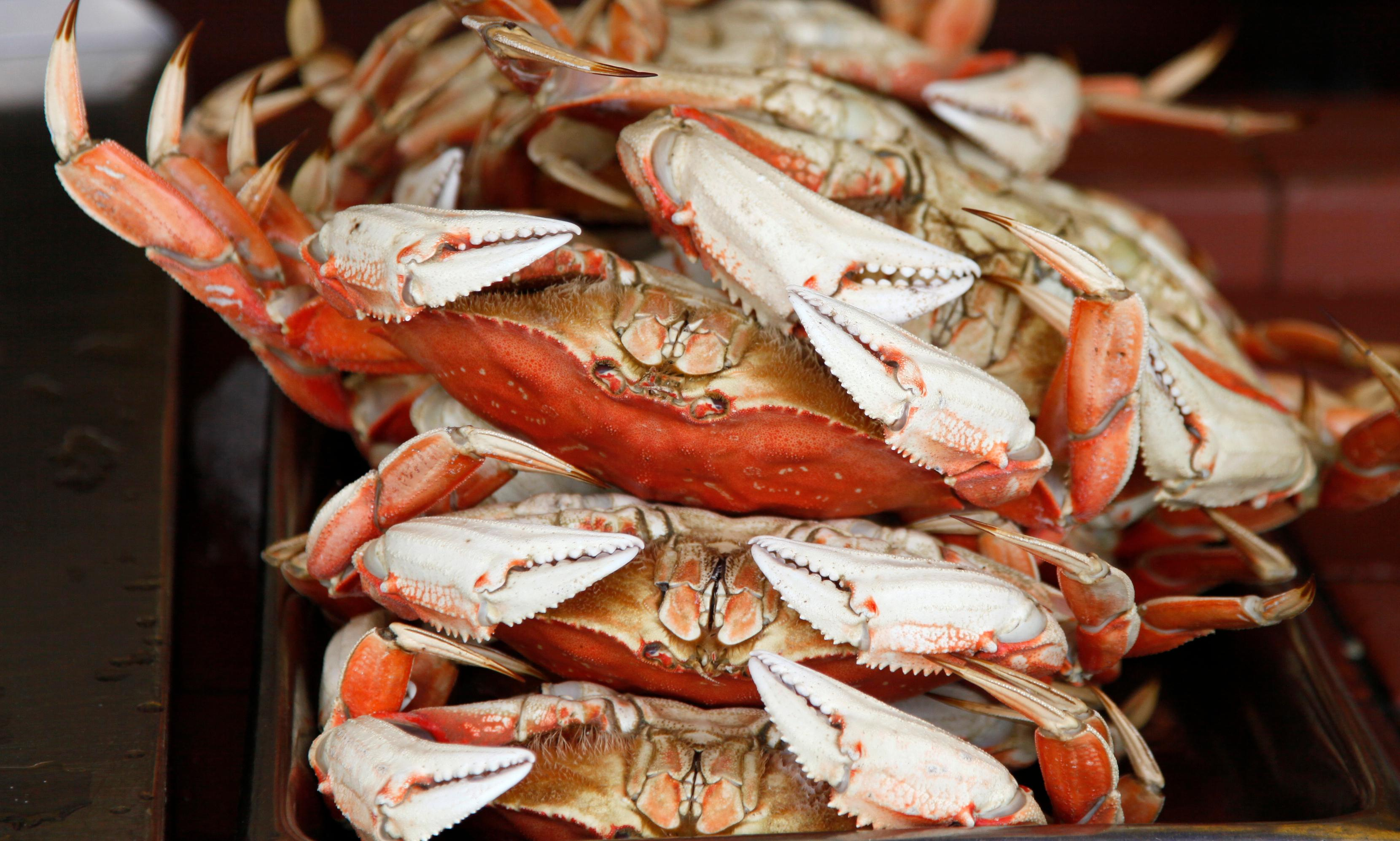 Claws out: crab fishermen sue 30 oil firms over climate change