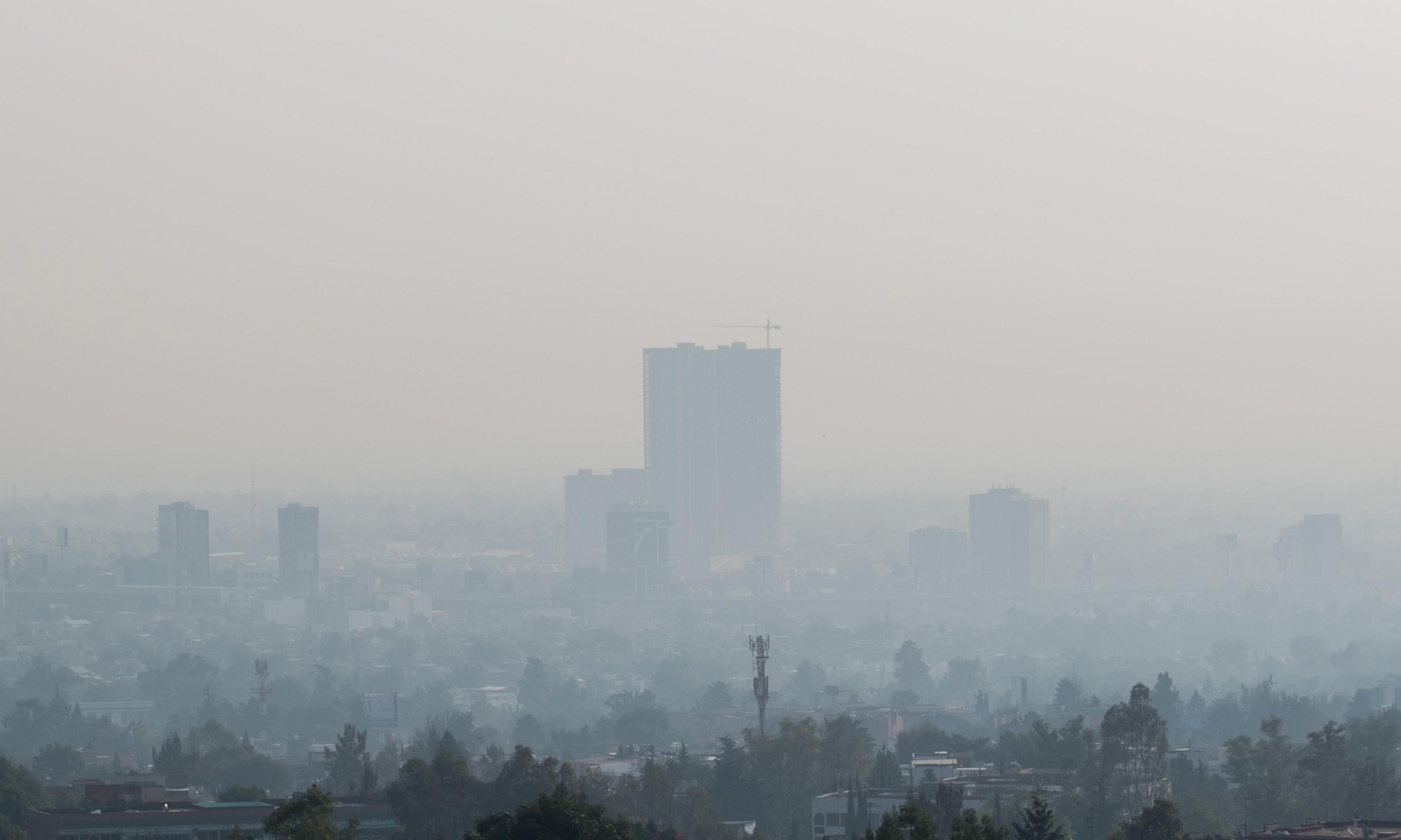 The five: airborne pollutants in our bodies