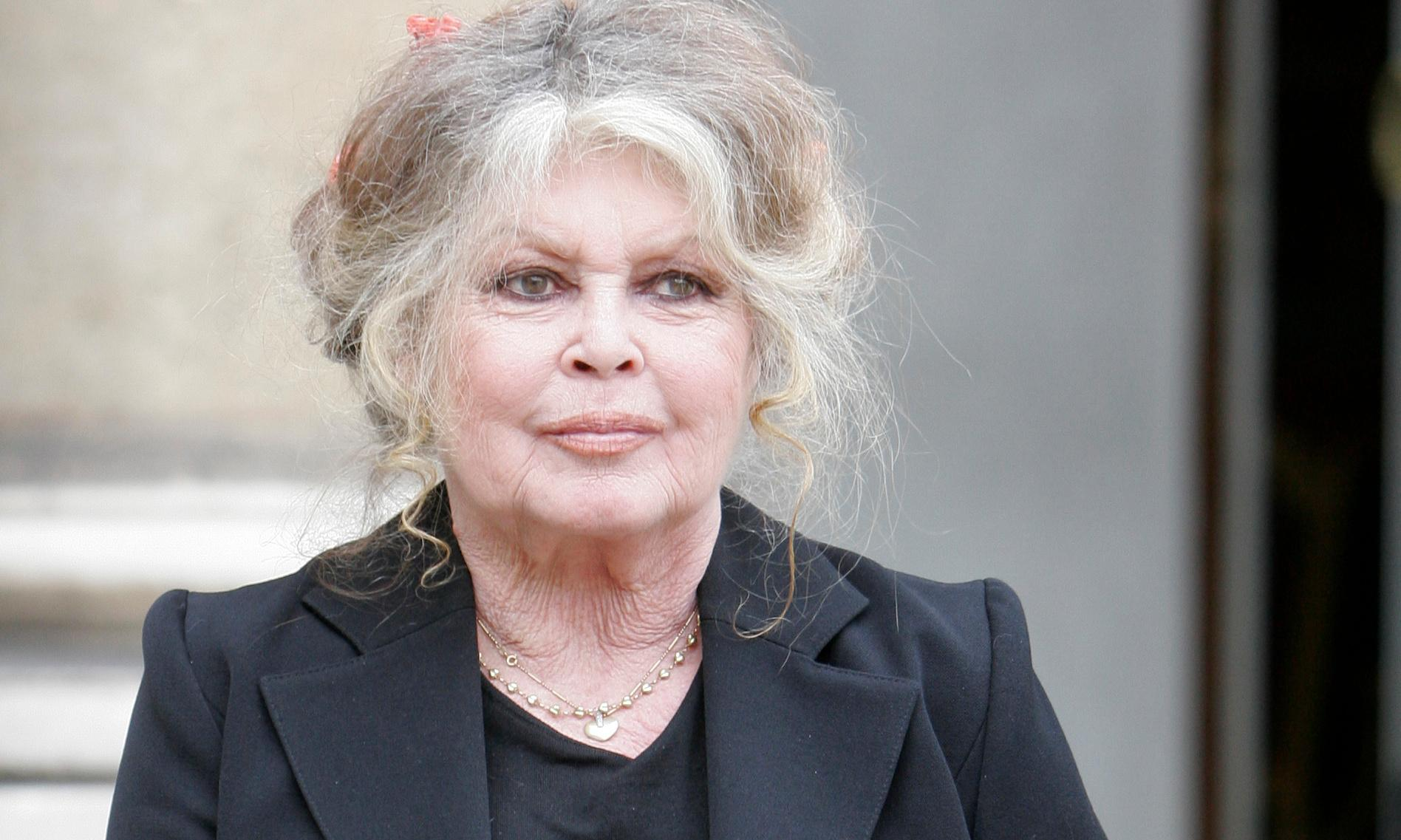 'I know what it feels like to be hunted': Brigitte Bardot on life in the spotlight