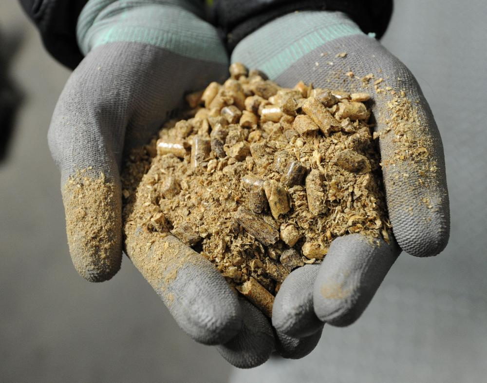 Wood pellets at Drax Power Station in North Yorkshire, the UK. Drax is one of Enviva's clients.