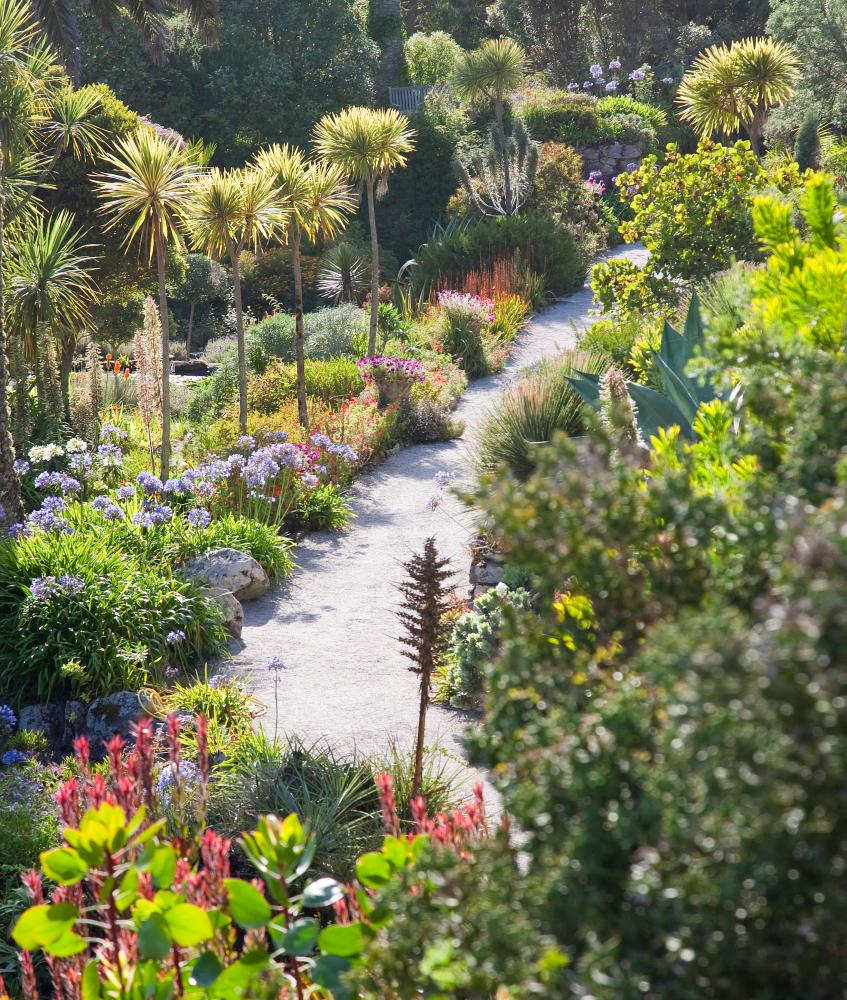 Subtropical island: Tresco Abbey Garden.