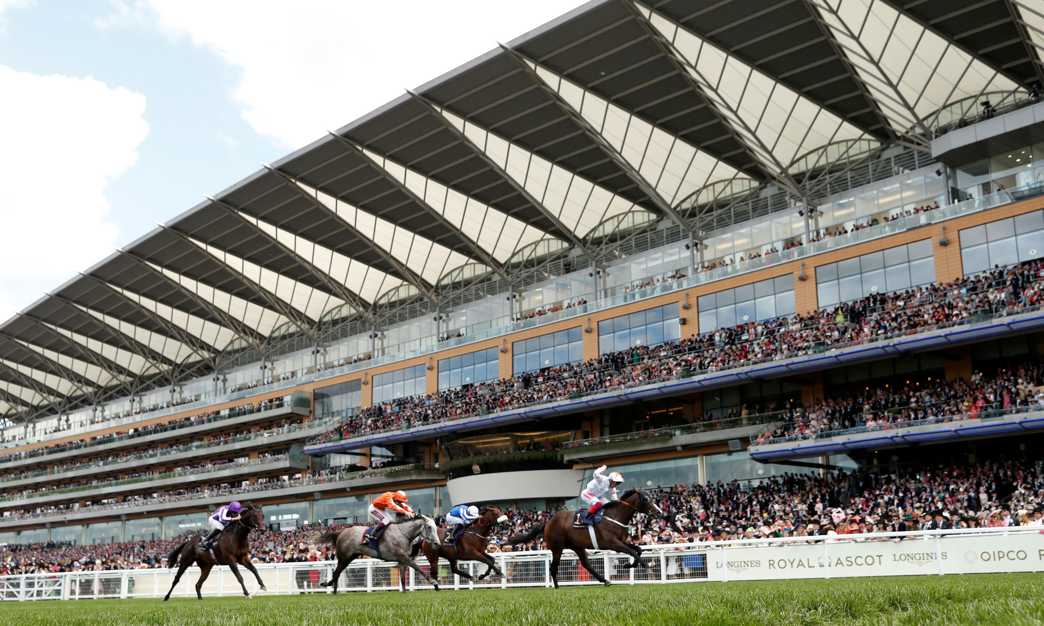 Talking Horses: Forever In Dreams can prove supersub in Haydock Sprint Cup