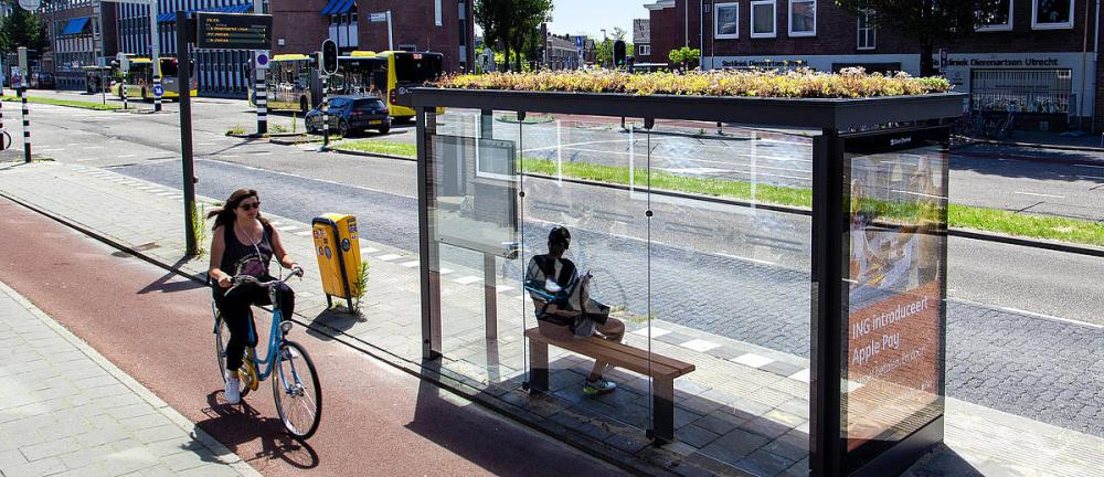 A green roof is seen on a bus stop in Utrecht