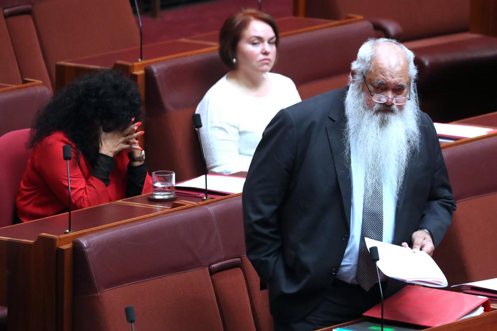Pat Dodson makes a passionate speech during a censure motion against Fraser Anning.