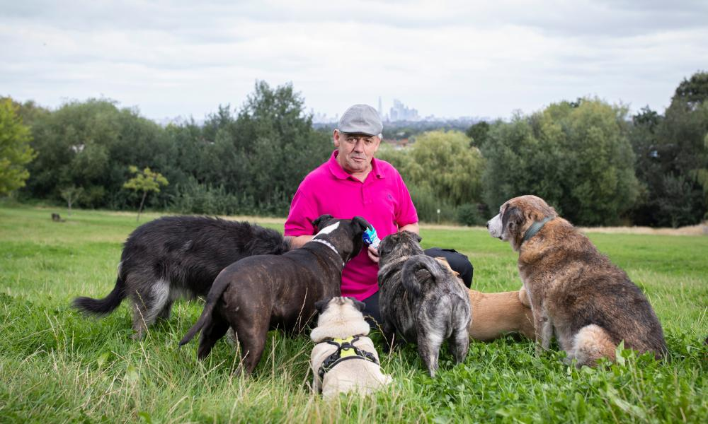 Mark Davis in Norwood Park, London, with his dogs.