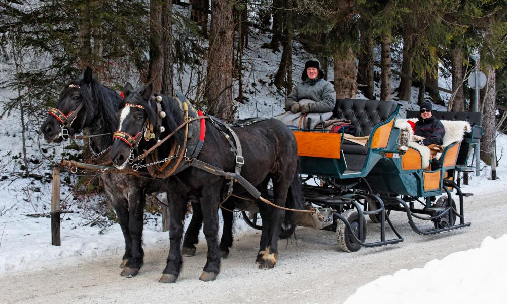 a horse-drawn carriage tour around Seefeld.