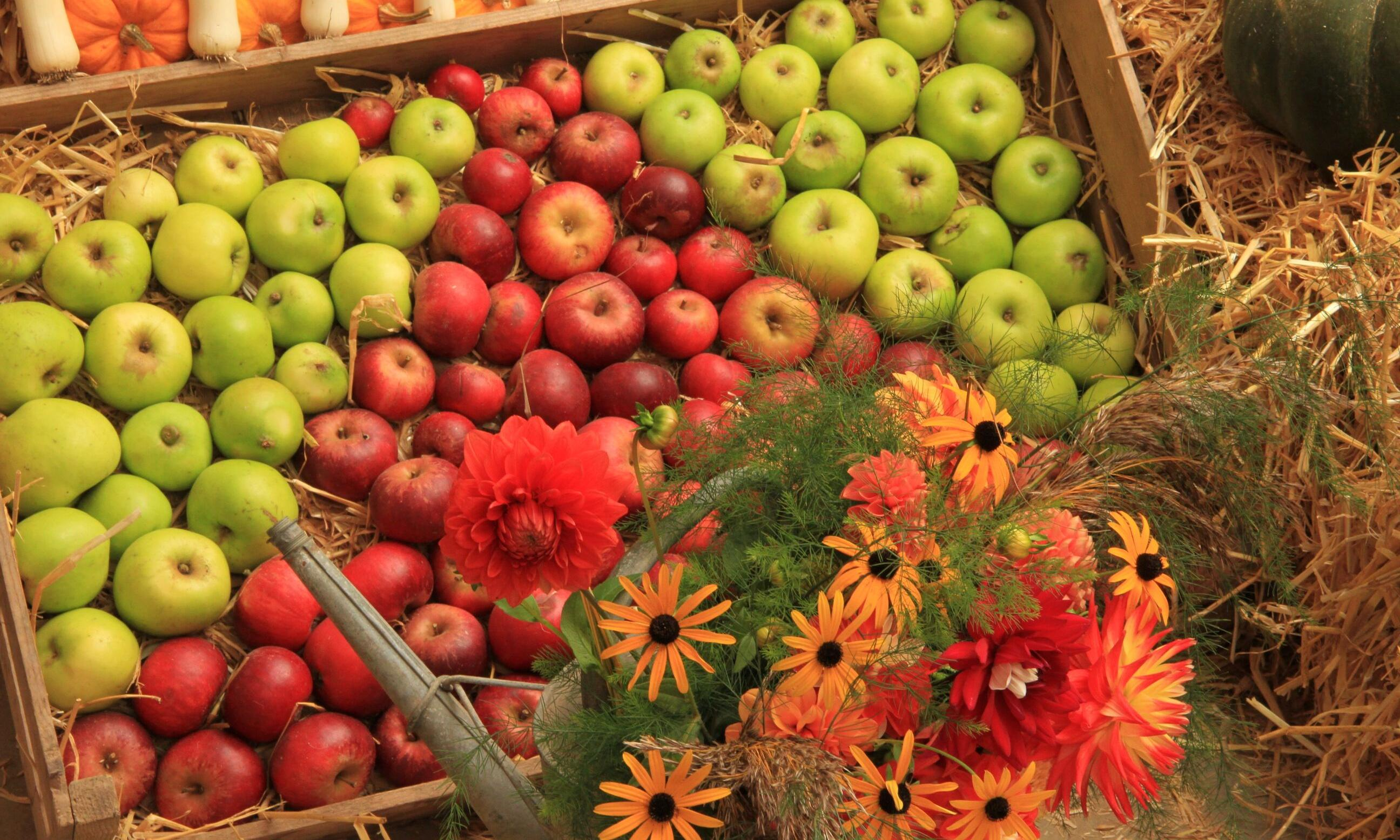 Harvest festivals, feasts and fare this autumn in the UK