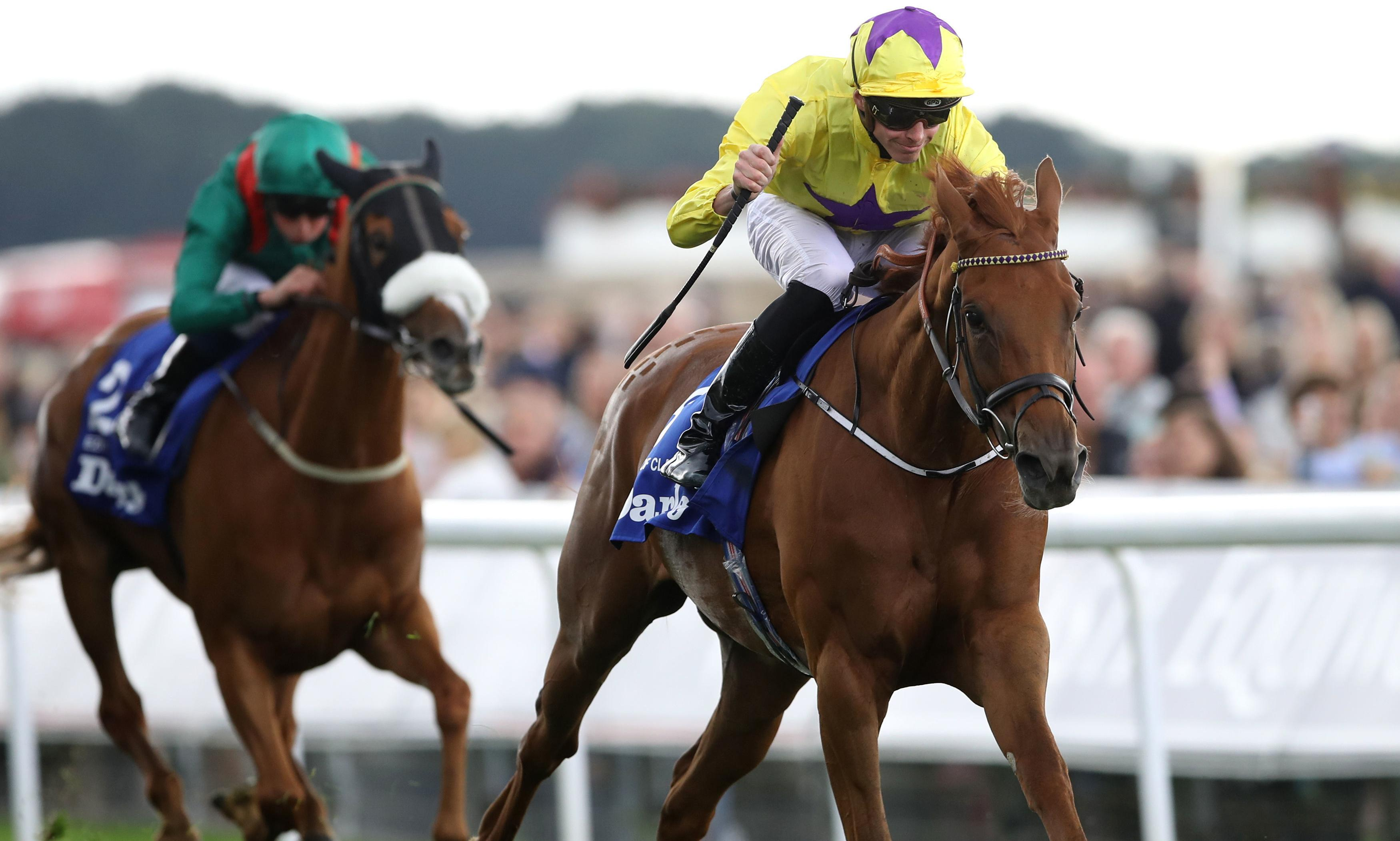 Sea Of Class fights for life after colic attack ends filly's career