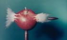 Revelations Exhibtion at the National Media Museum PR from Phil.Oates@nationalmediamuseum.org.uk  Bullet through Apple, 1964 - Color   Harold Edgerton, MIT, 2015, courtesy of Palm Press, Inc..jpg