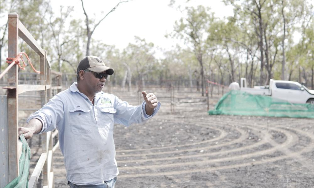 Balnggarrawarra ranger Cliff Harrigan says sacred sites and ancient rock art can be trampled by herds