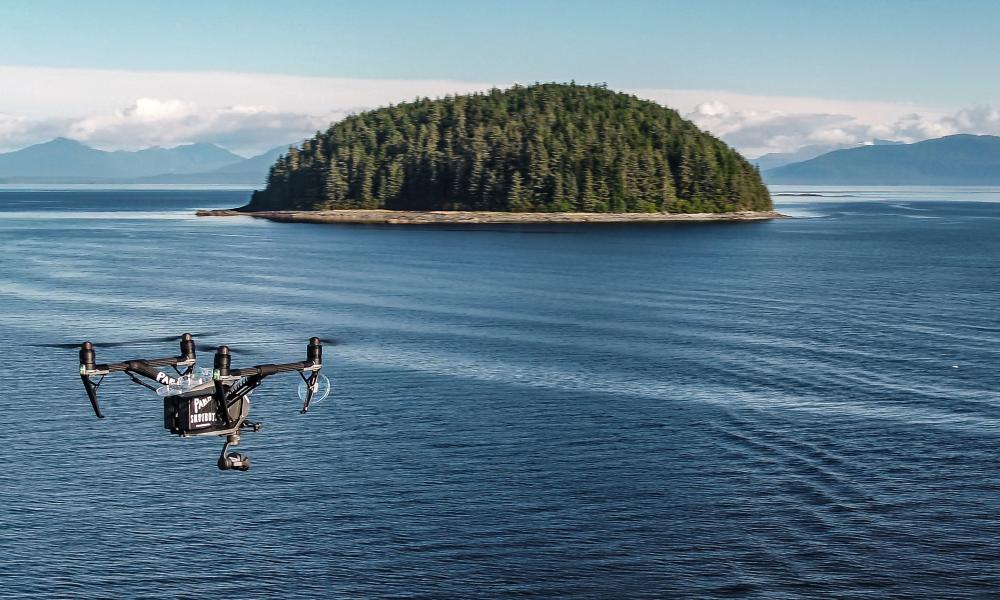 Aerial whale-watcher: the non-invasive Parley SnotBot.