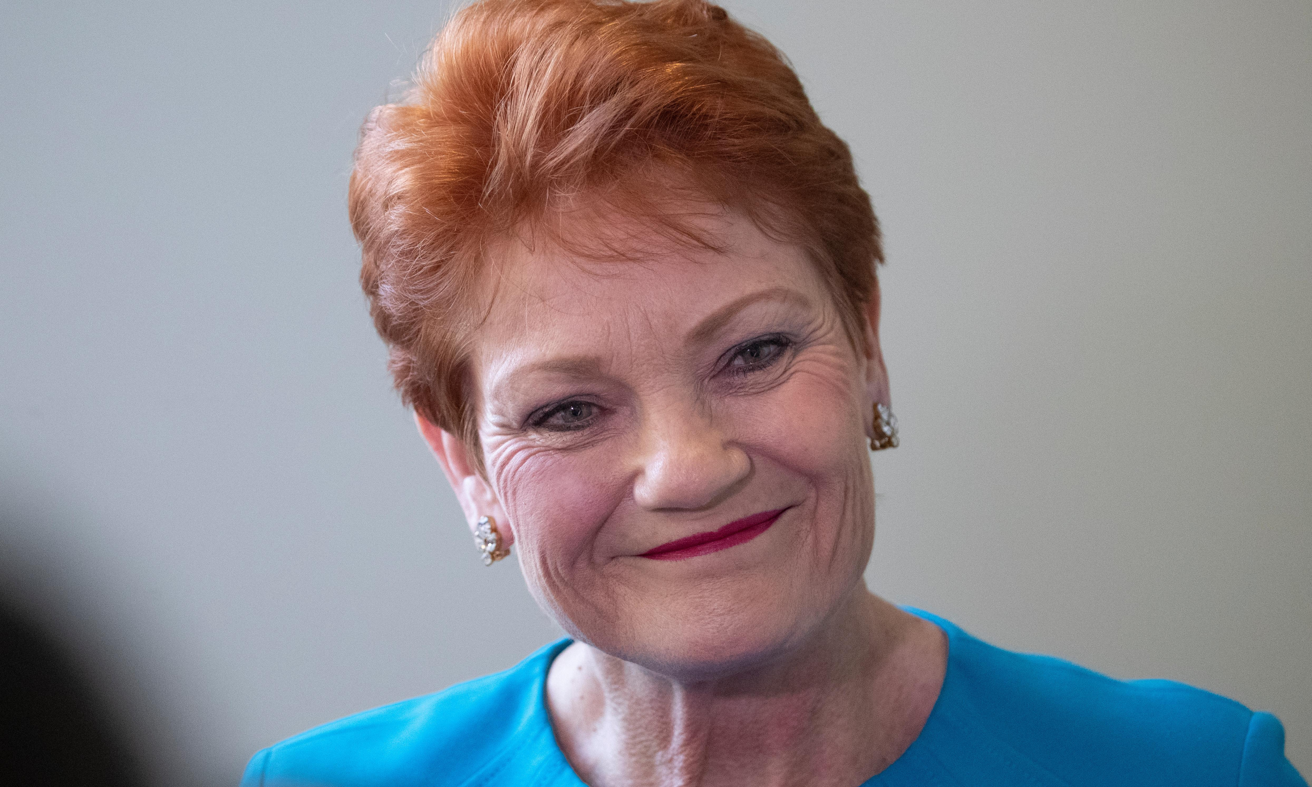 Pauline Hanson sparks fury with claim domestic violence victims are lying to family court