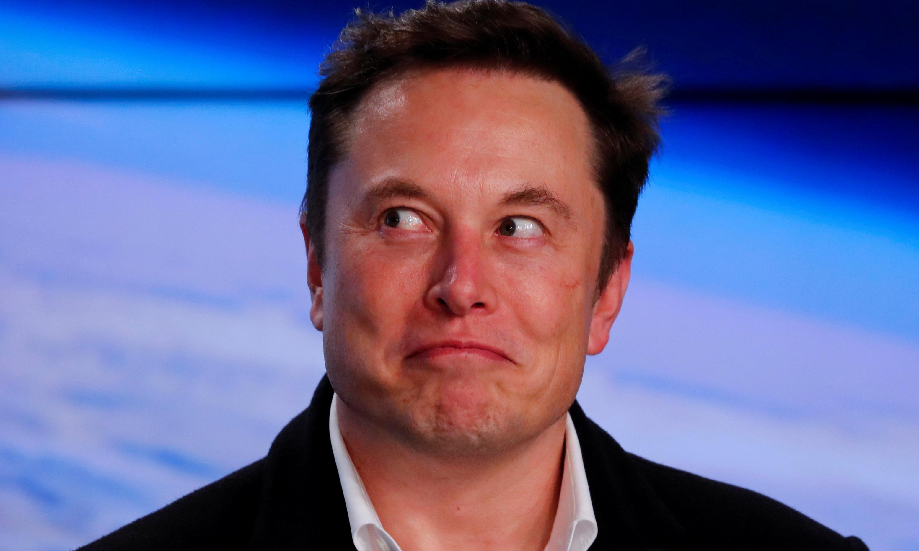 Elon Musk hires man behind 'absolute unit' sheep meme to run Tesla's social media