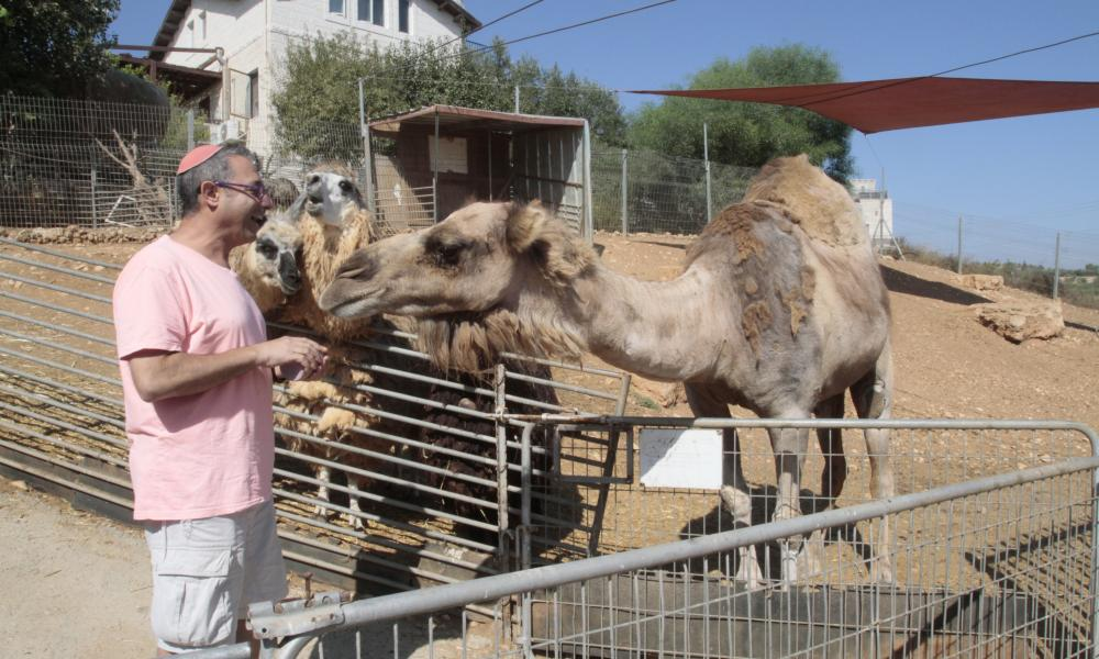 Yoni Yehuda with a camel