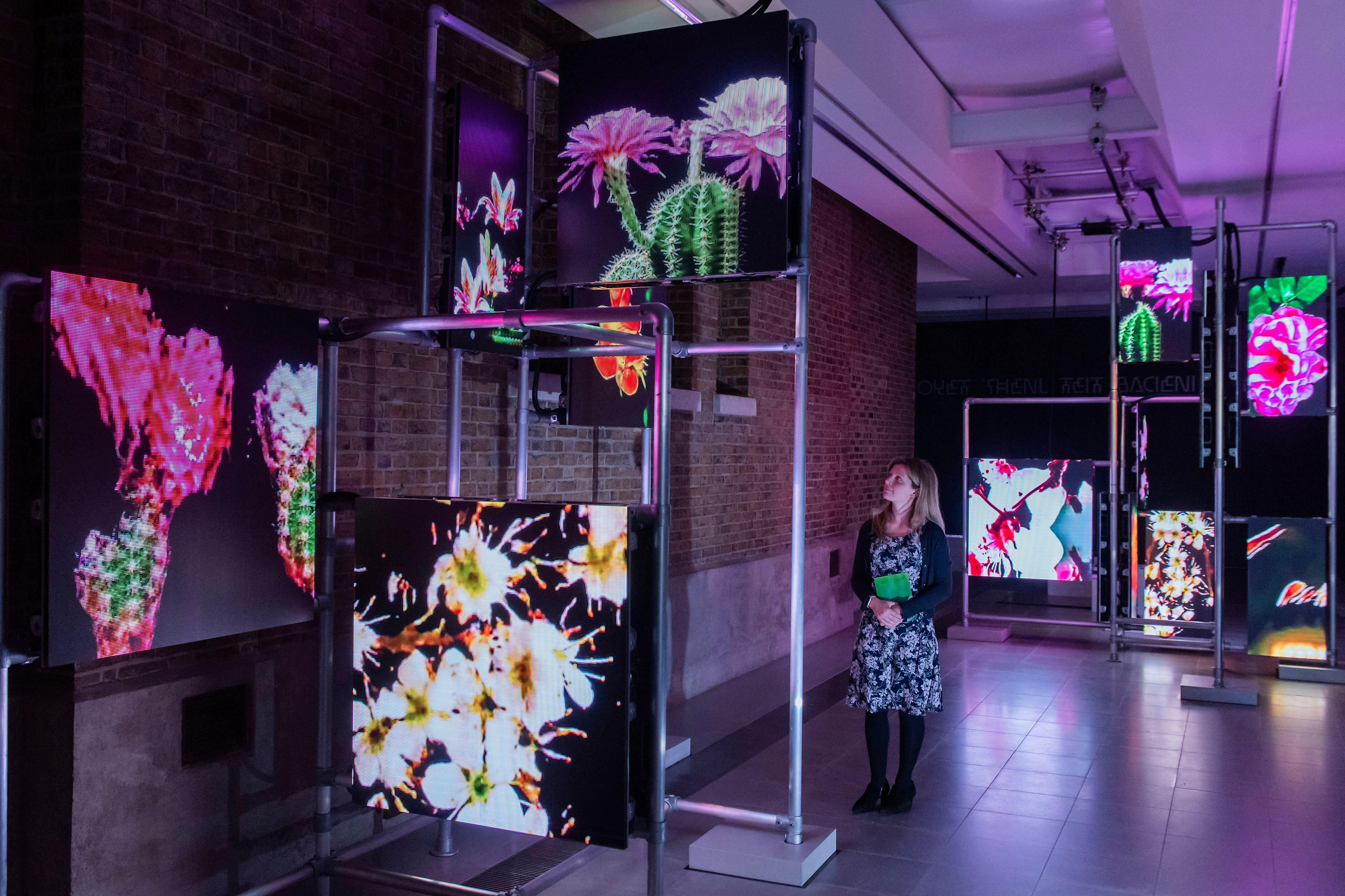 Hito Steyerl: Power Plants review – all a bit tiresome