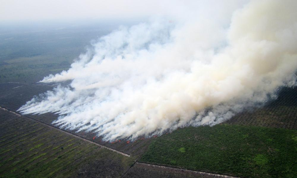 Smoke rising from burning areas near agricultural plantations in Rokan Hilir, Riau province, Indonesia, 17 June 2013.