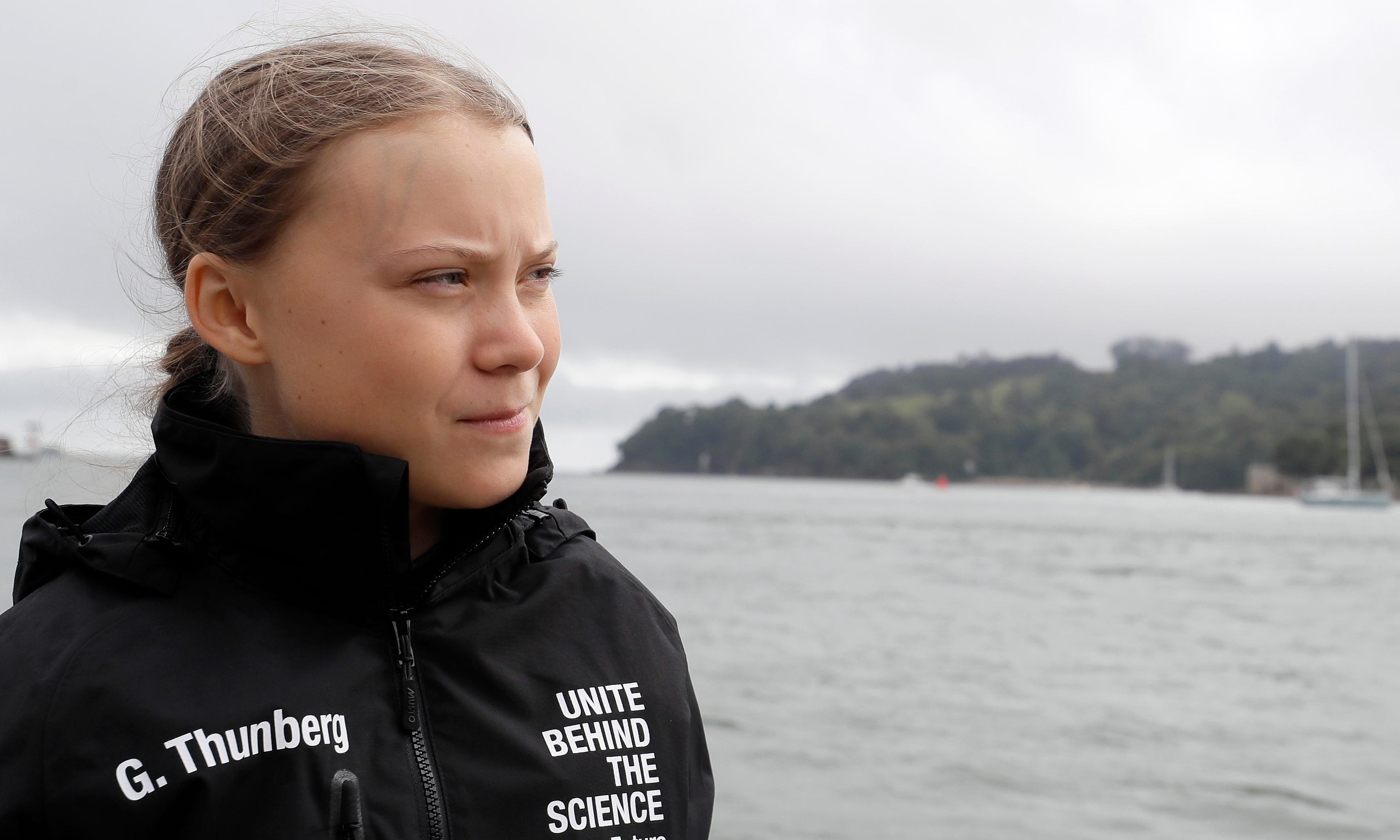 'Greta Thunberg effect' driving growth in carbon offsetting