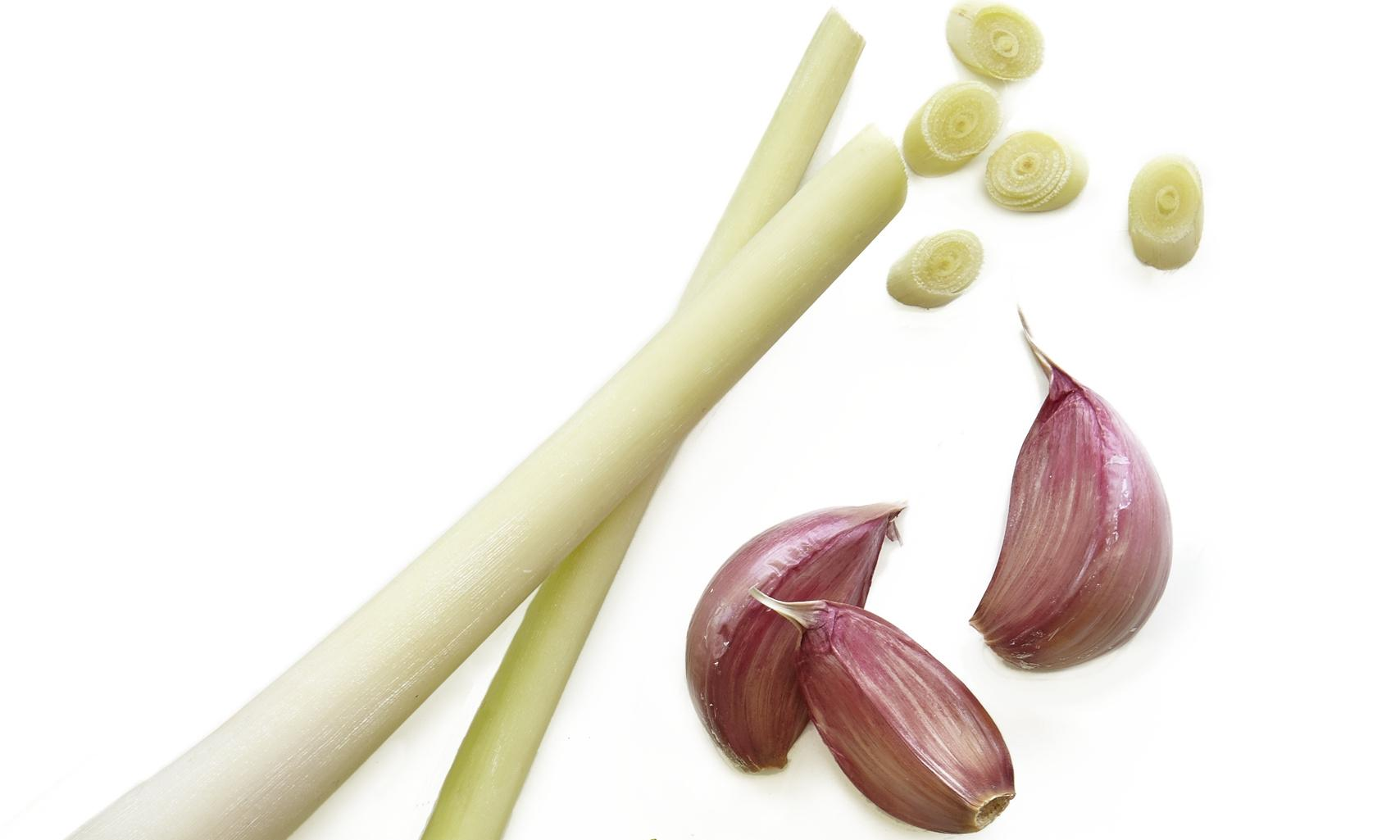 Lemongrass: an integral aromatic with some furry grey fans
