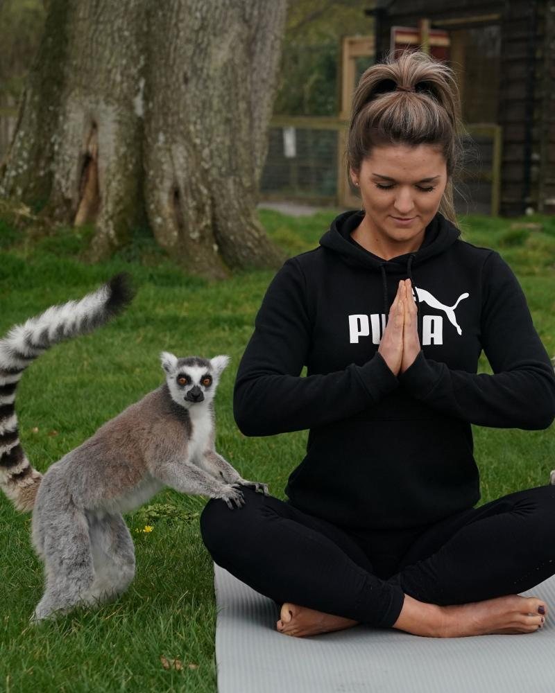 Yogi with lemur