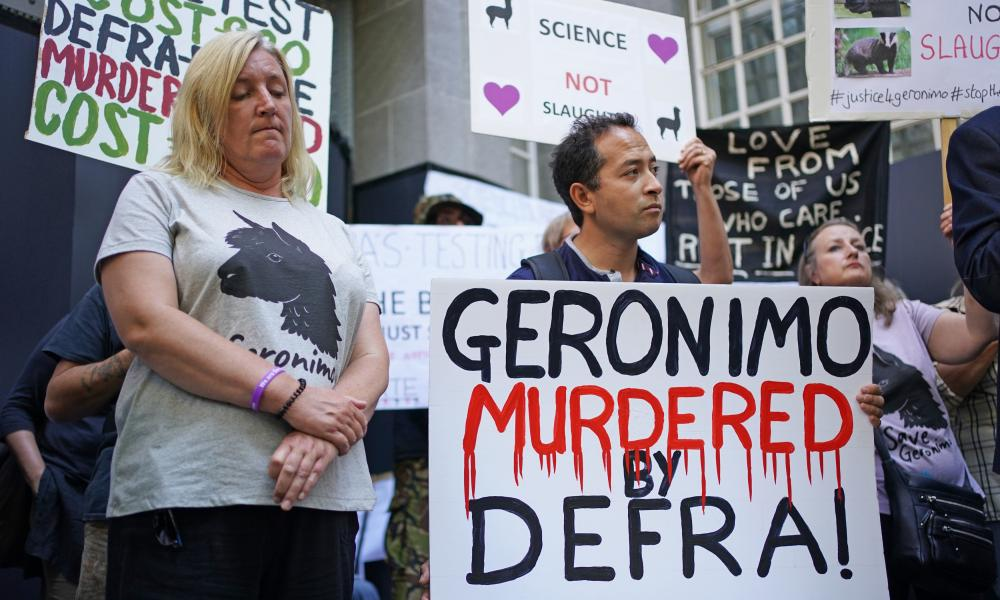 Helen Macdonald, left, the owner of Geronimo, with members of the Justice for Geronimo hold a protest outside the Defra offices in London.