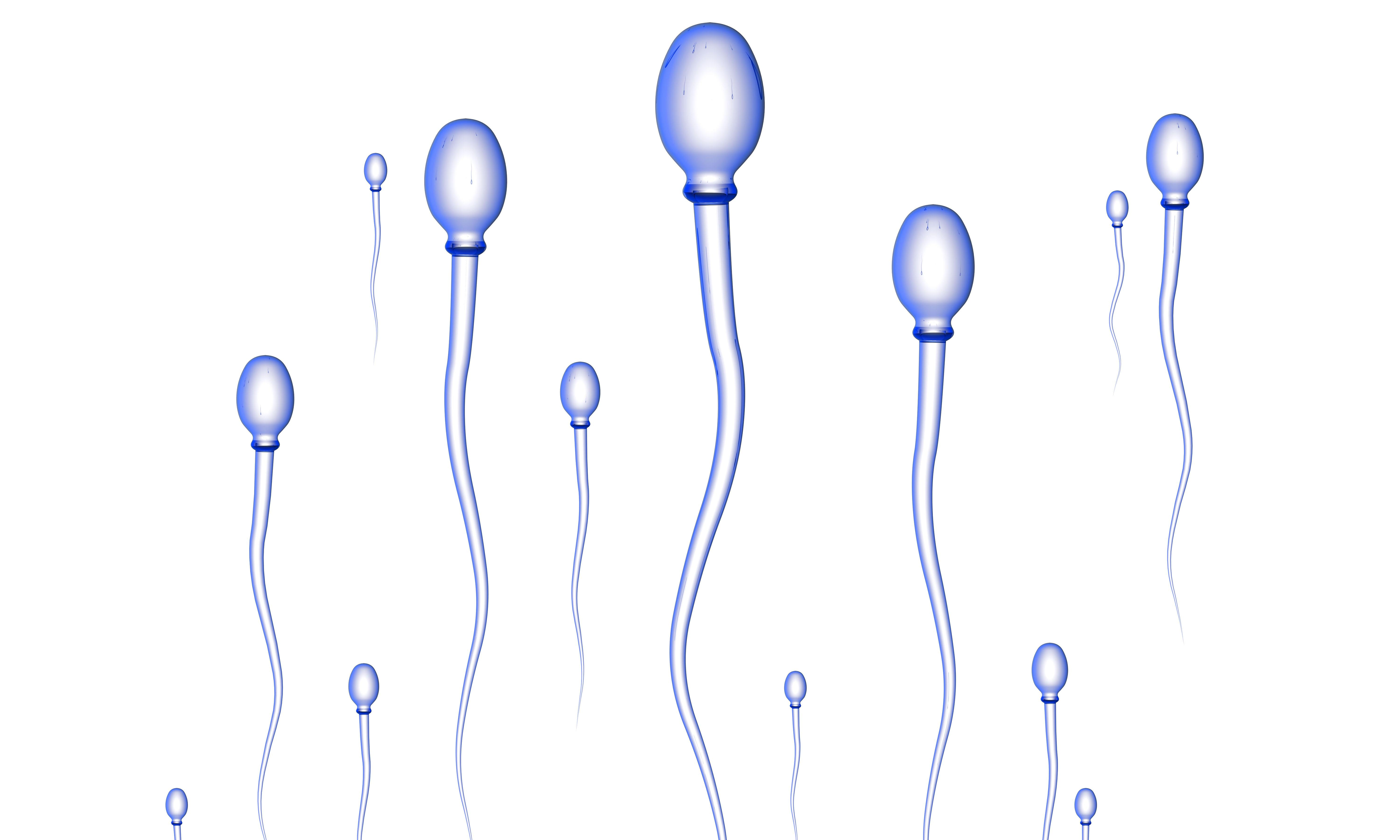 Scientists a step closer to mimicking way human body creates sperm