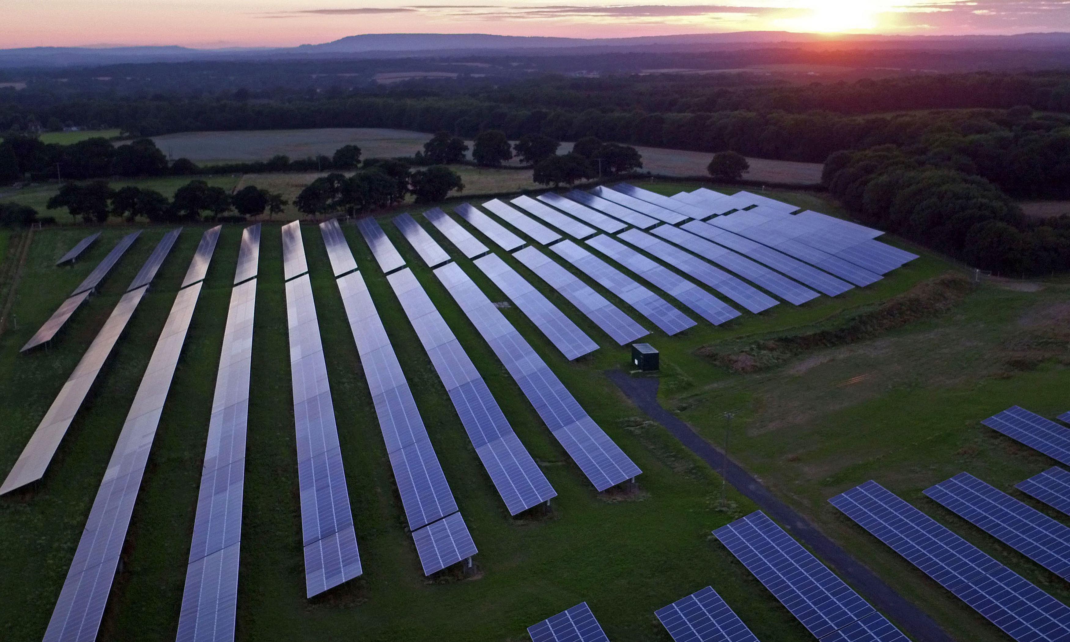 New renewable energy capacity hit record levels in 2019